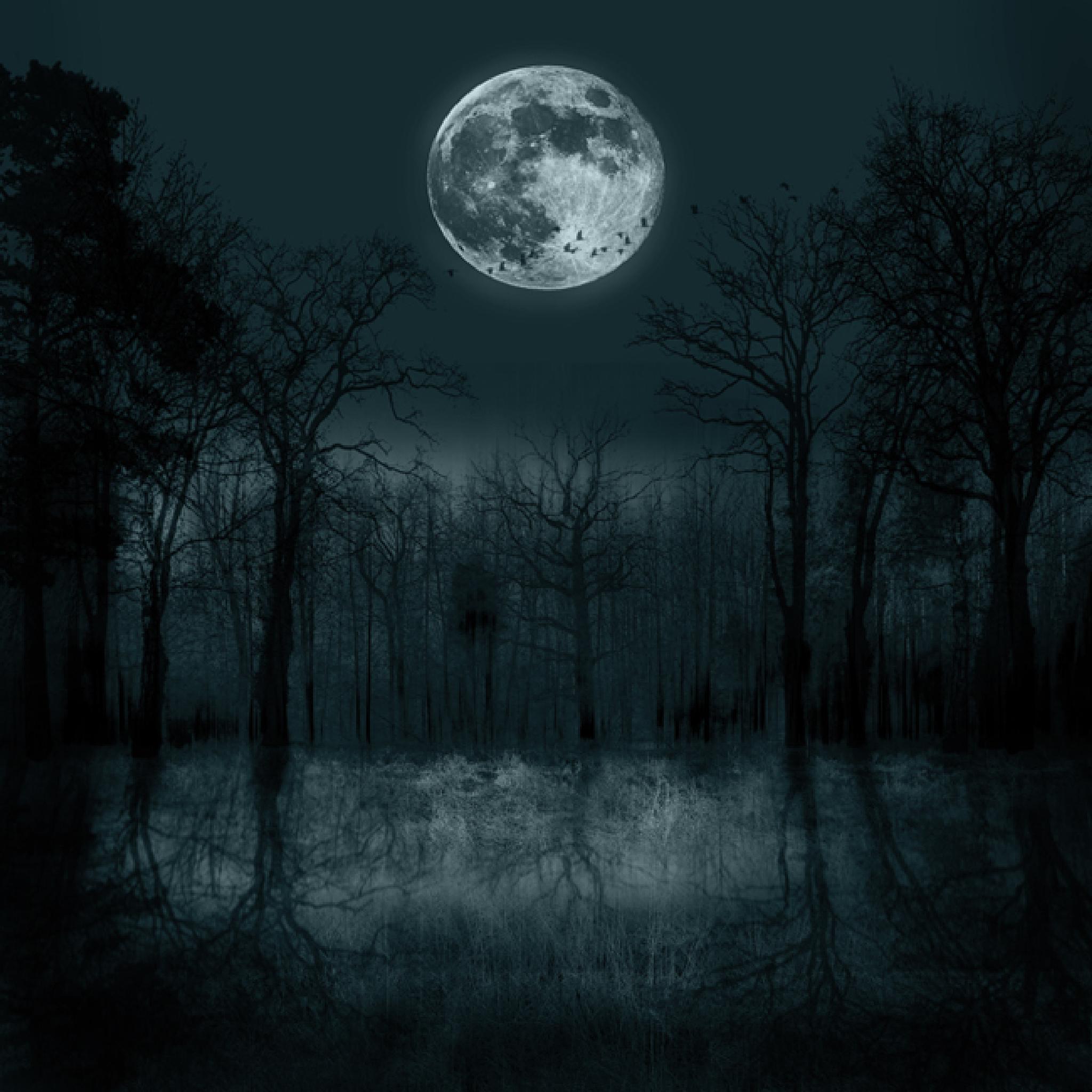 Luna by 2marcus