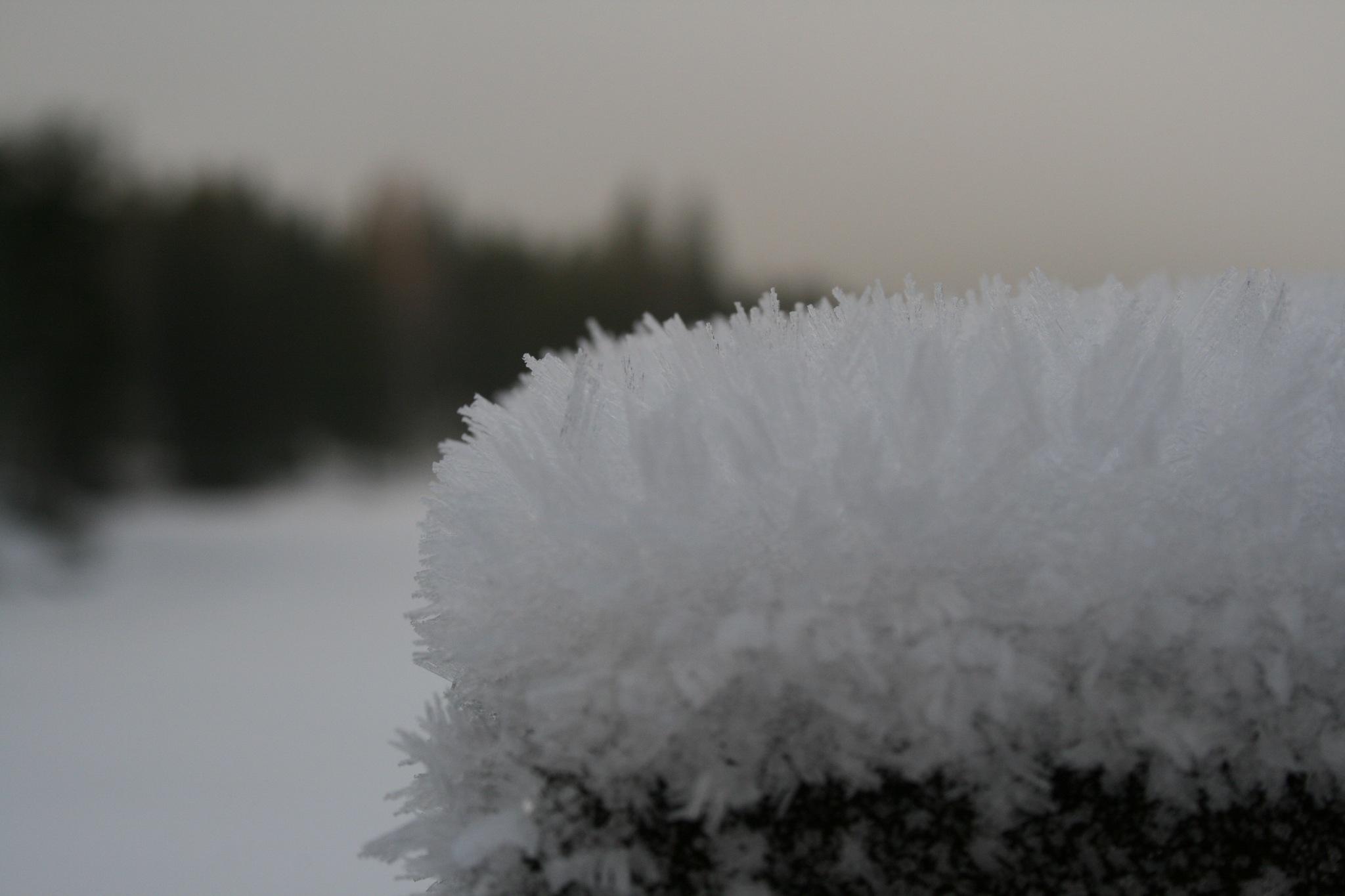 snowcrystal by jonandersen71