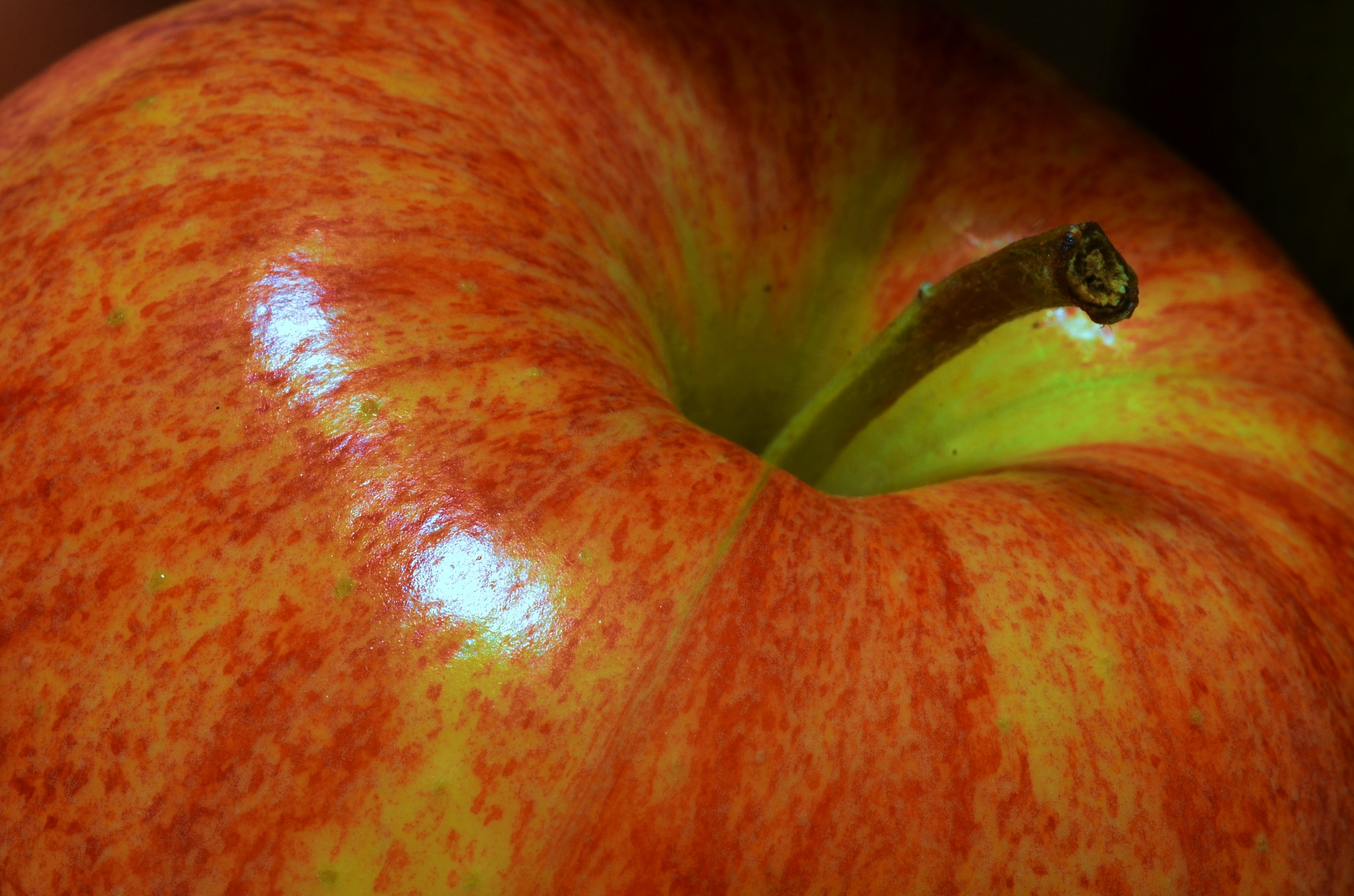 Apple by Sridhar R Setty
