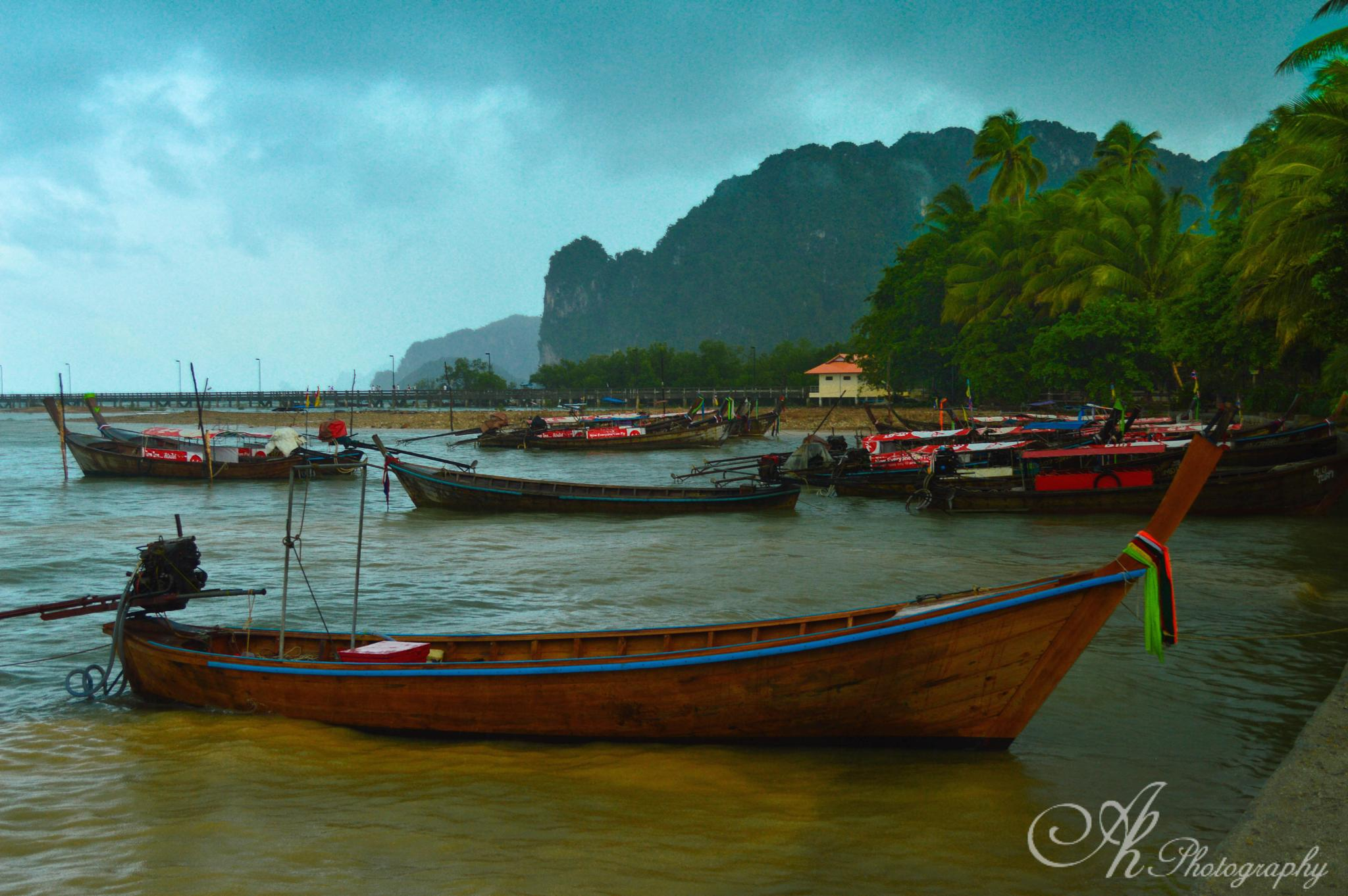 Stormy Day at the shore by Anupam Hore
