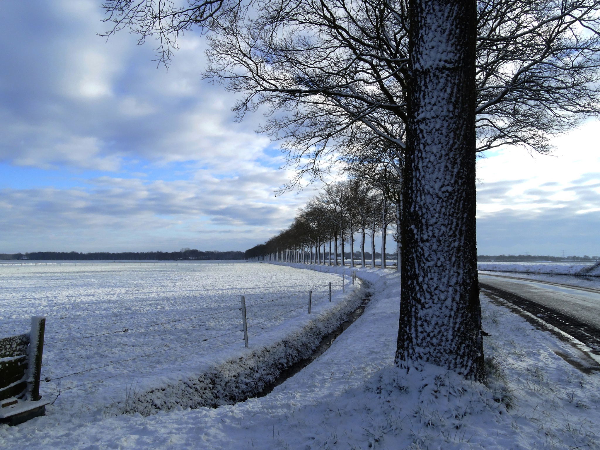 Winter morning with snowy trees! by GertdeVos