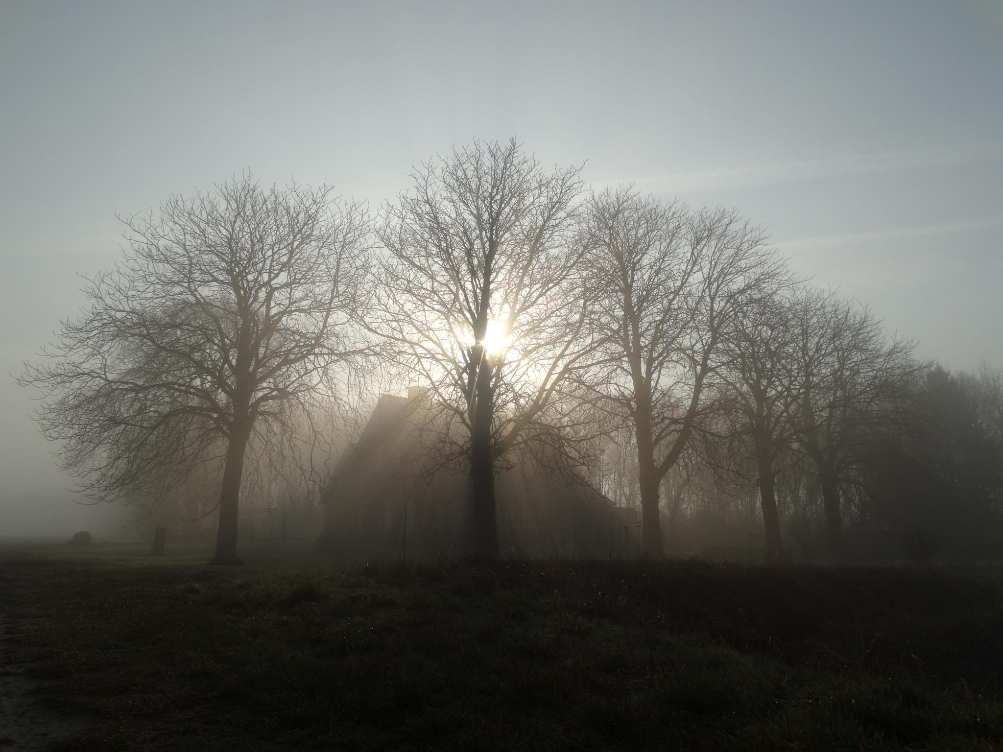 Spooky house in the fog!  by GertdeVos