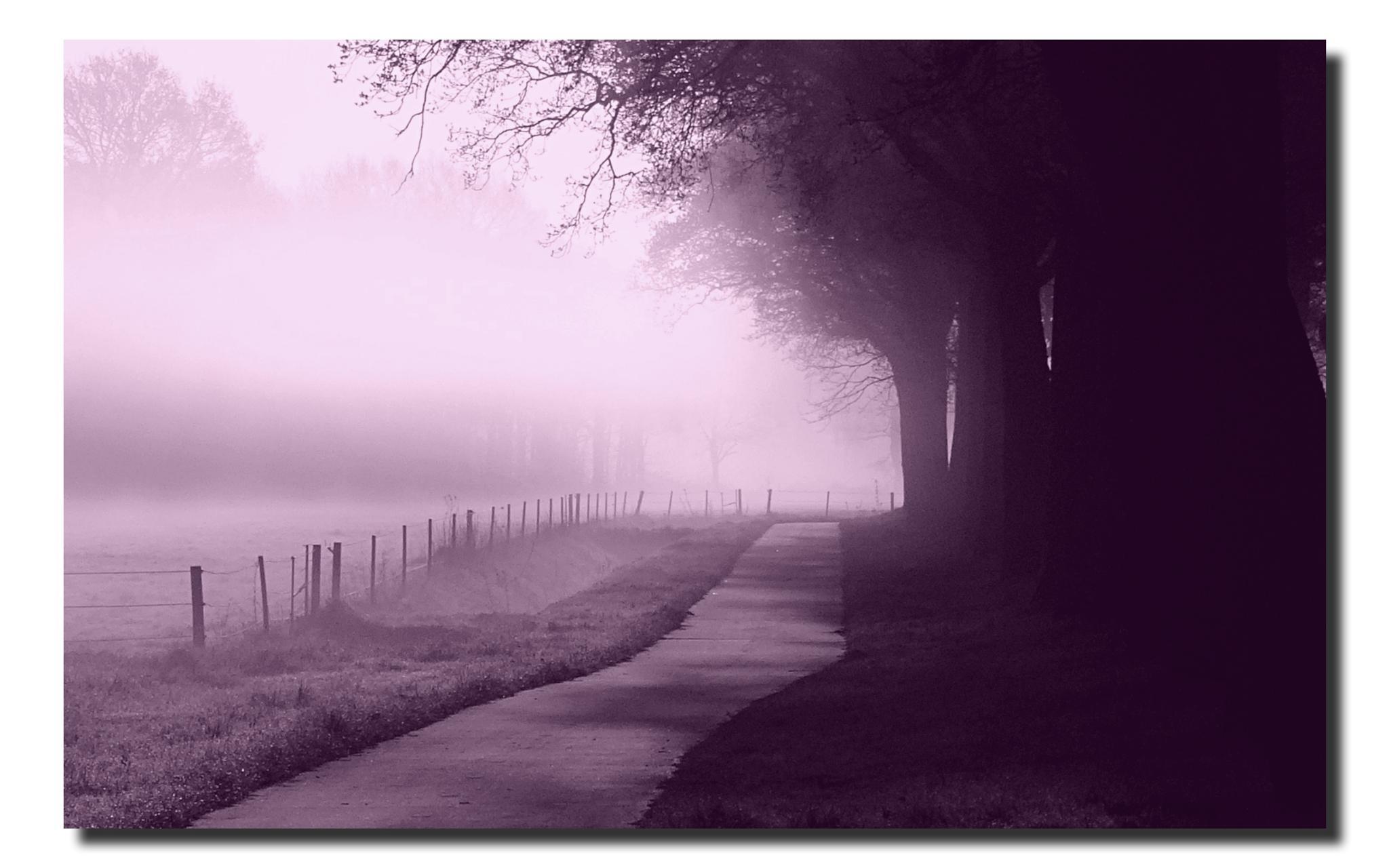 Serene morning by GertdeVos