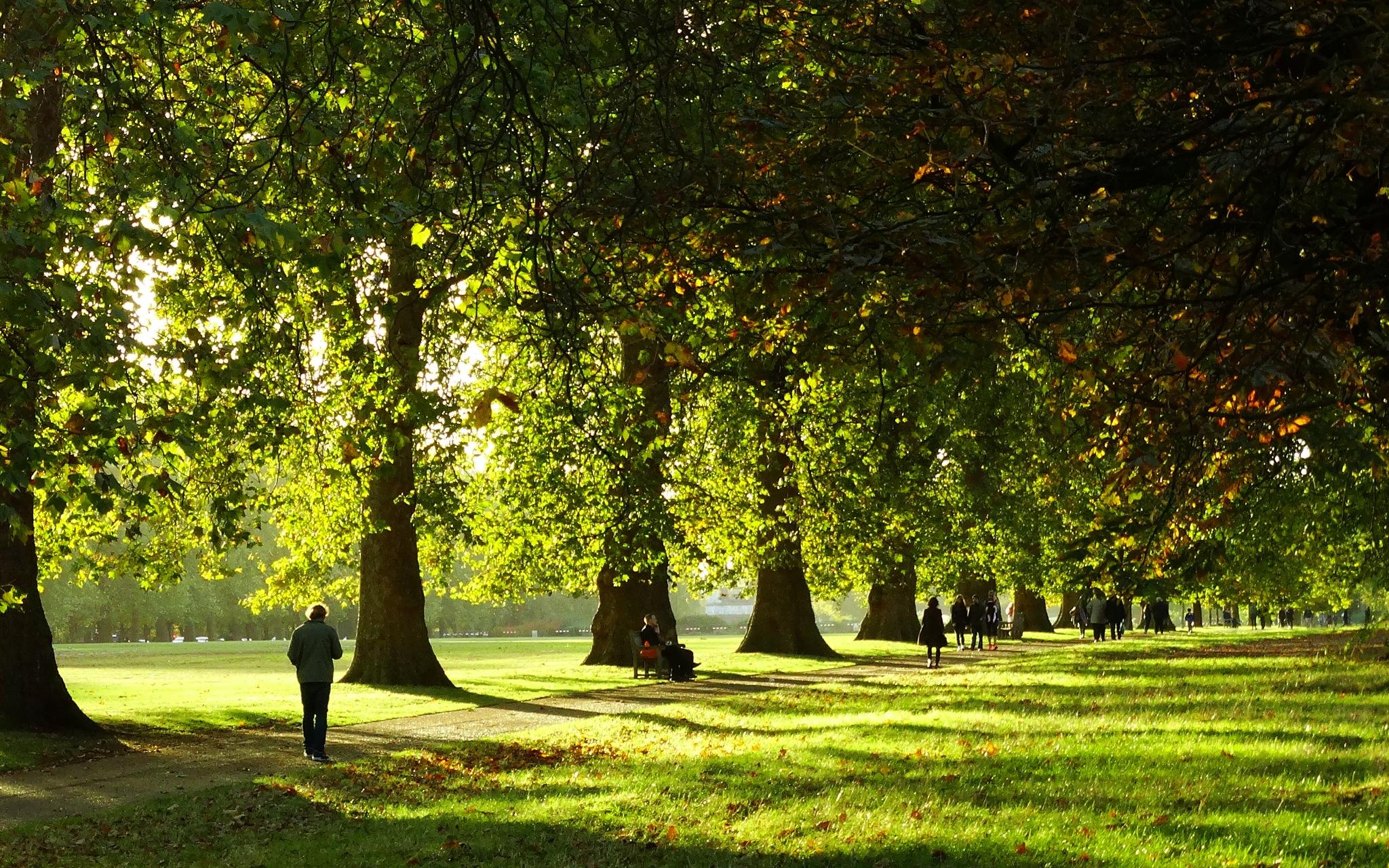 Lazy Sunday in the park!  by GertdeVos