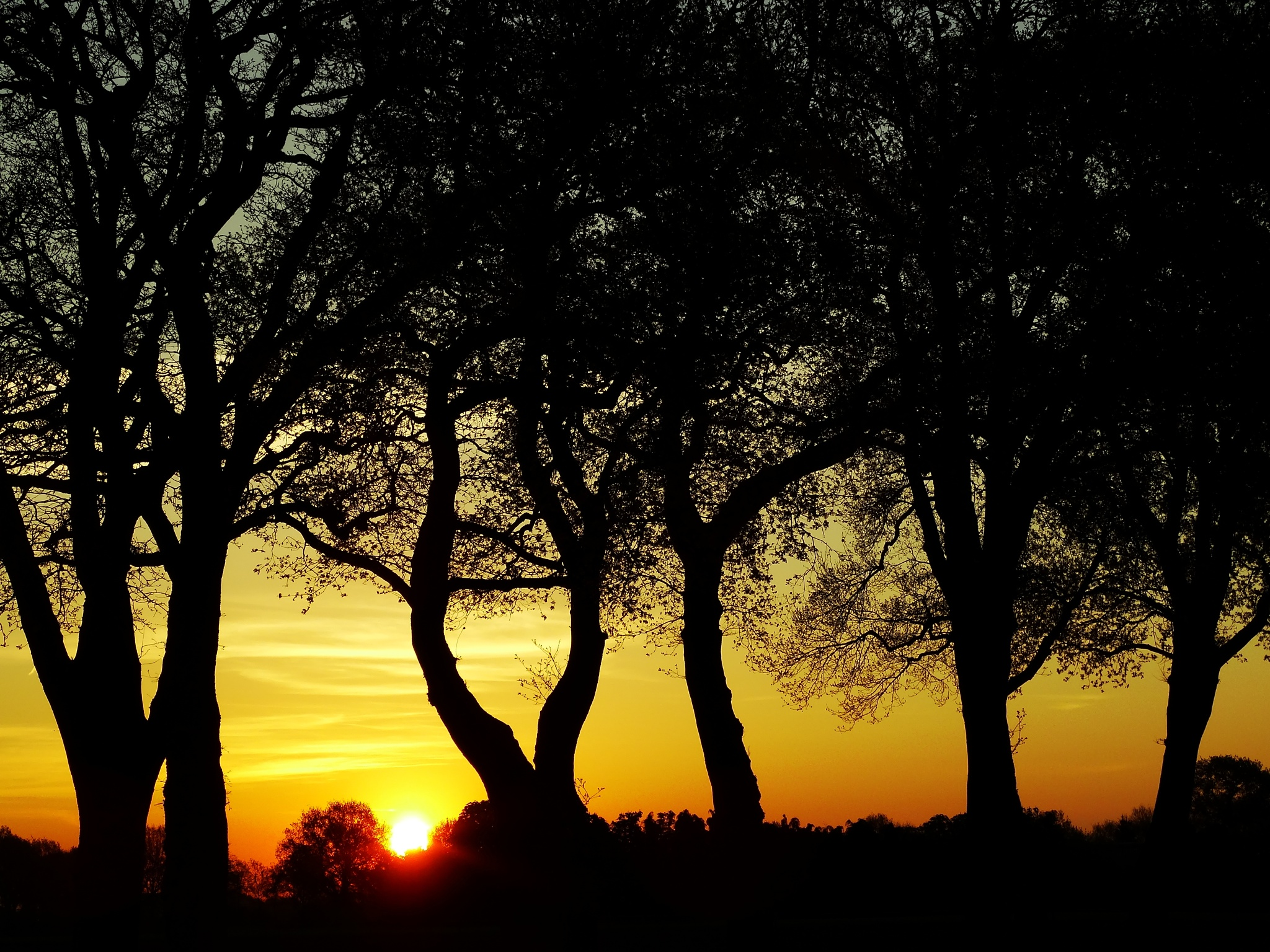Sunset  by GertdeVos
