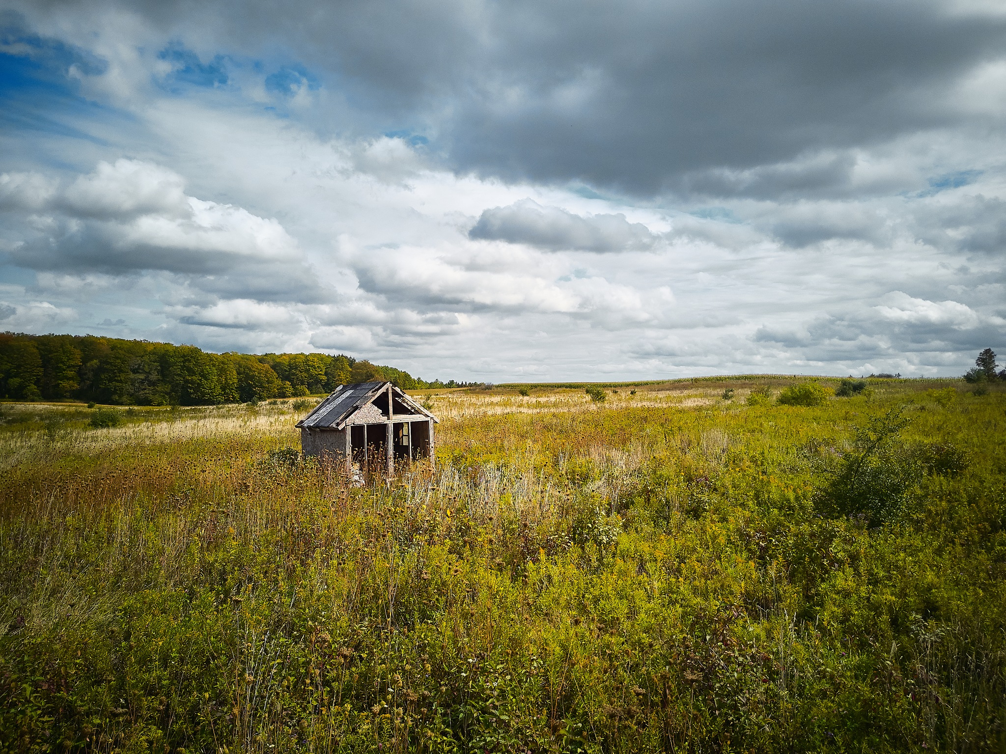 Abandoned by Herb Drummond