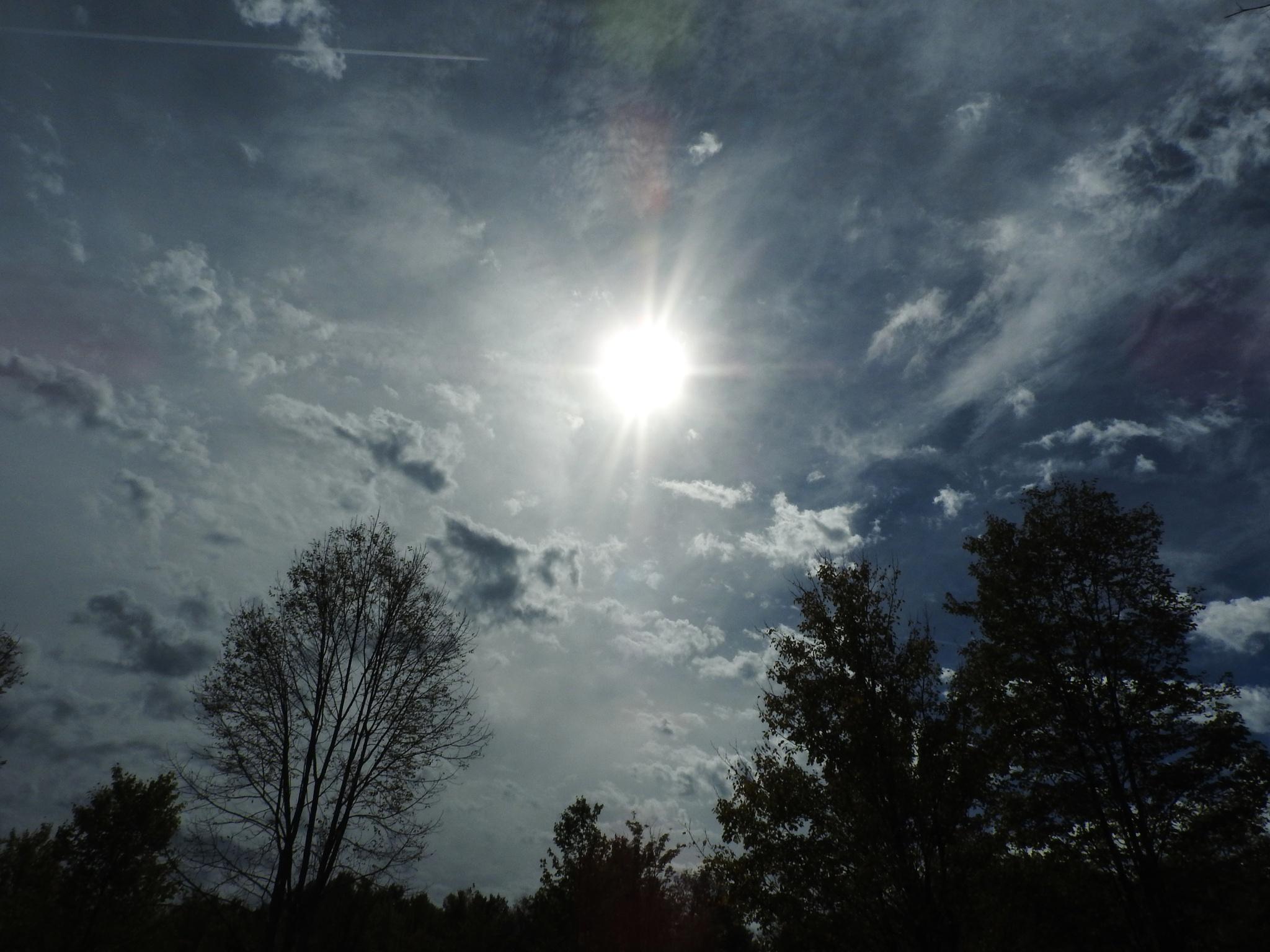 Sunny Monday by Denni