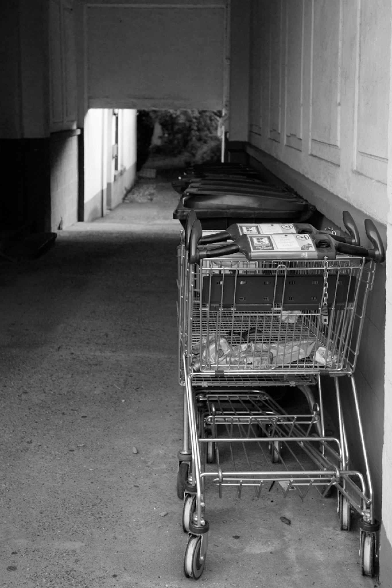 Carts by OKO