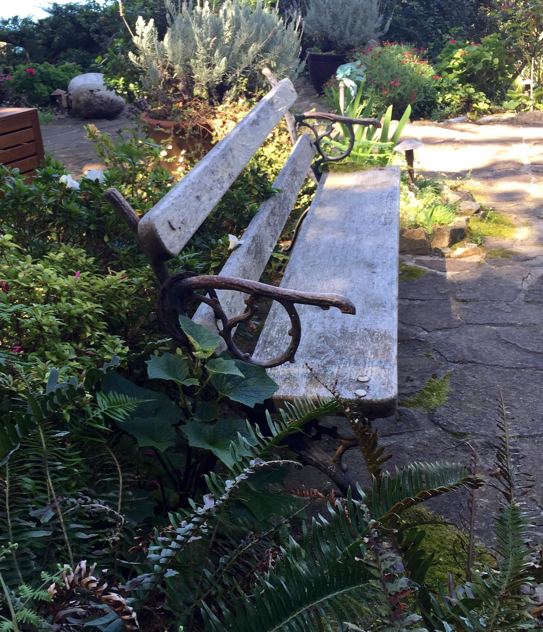 Bench by piamonte.jr