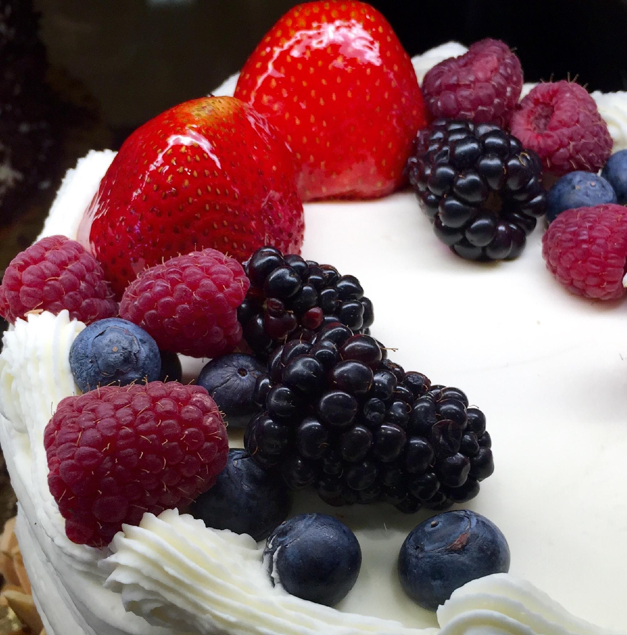 Photo in Food #food #dessert #berries #cake