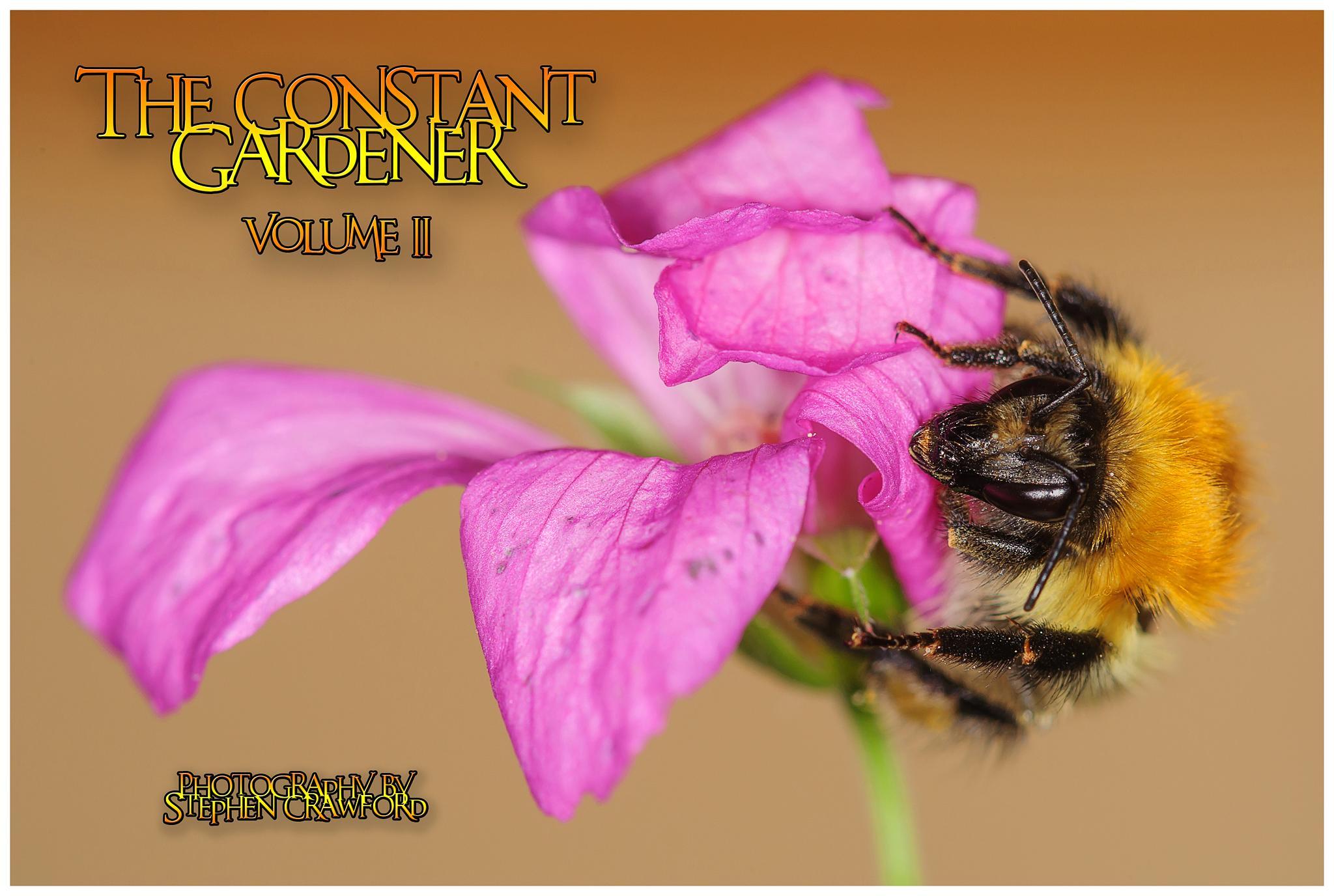 Cover of Lynda's garden book by scrawcreations  (Stephen)