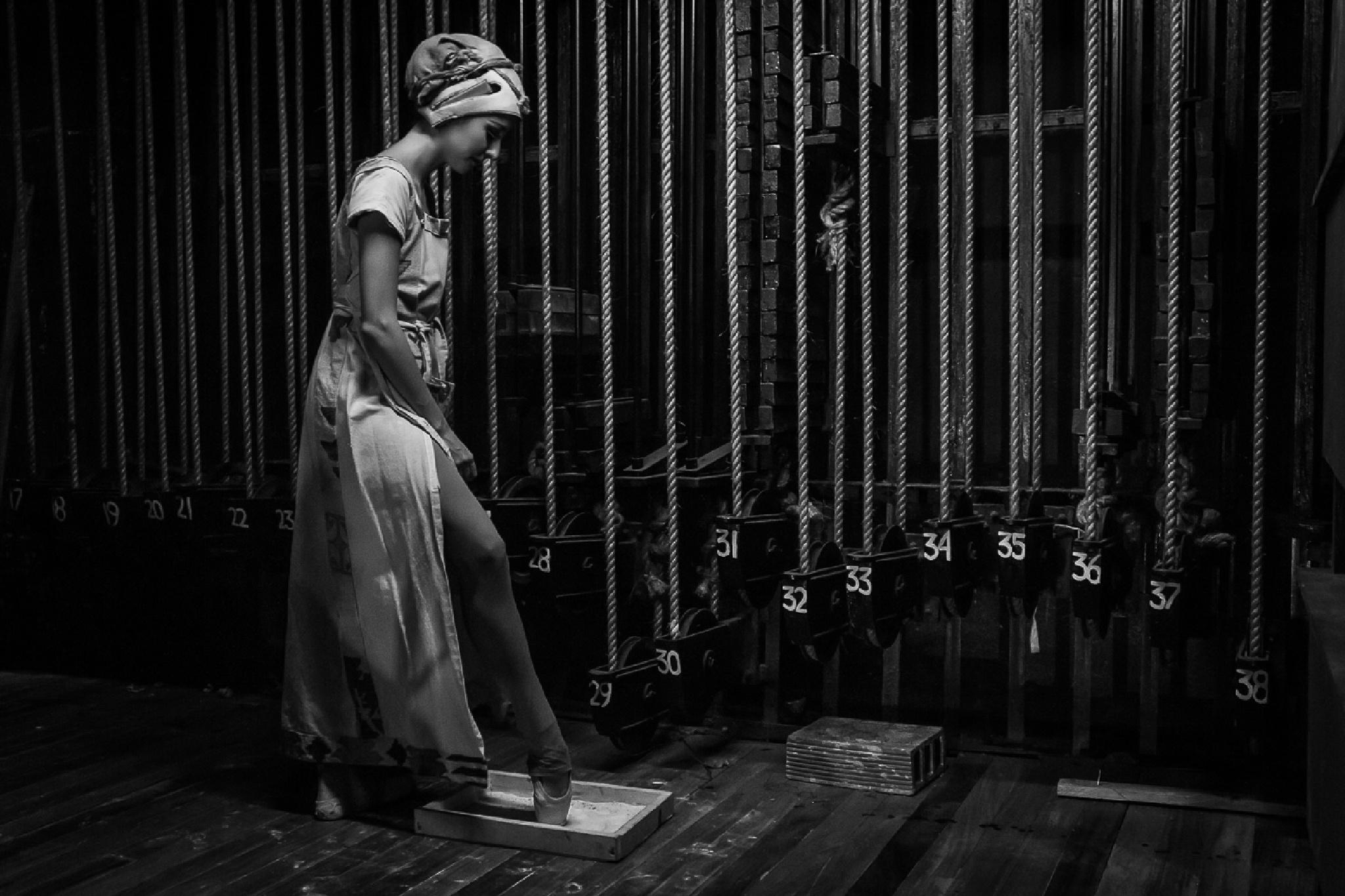 Vida by Artyom Shlapachenko