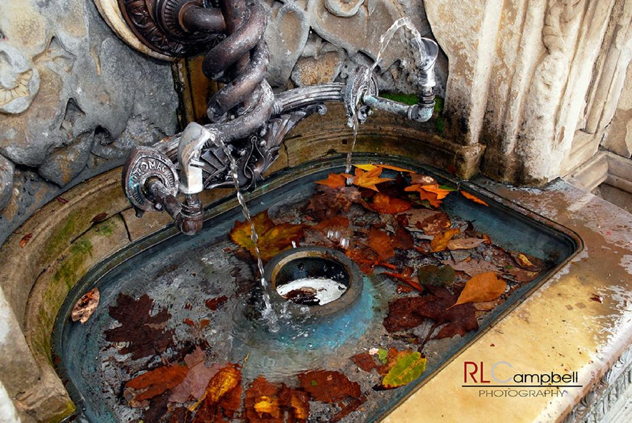 Fall Fountail by rlcampbellphotography