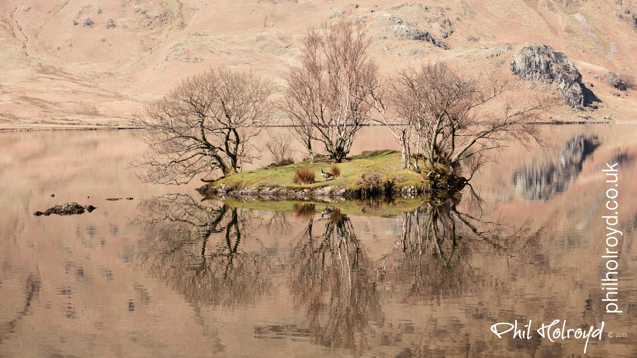 Holme Island by Phil