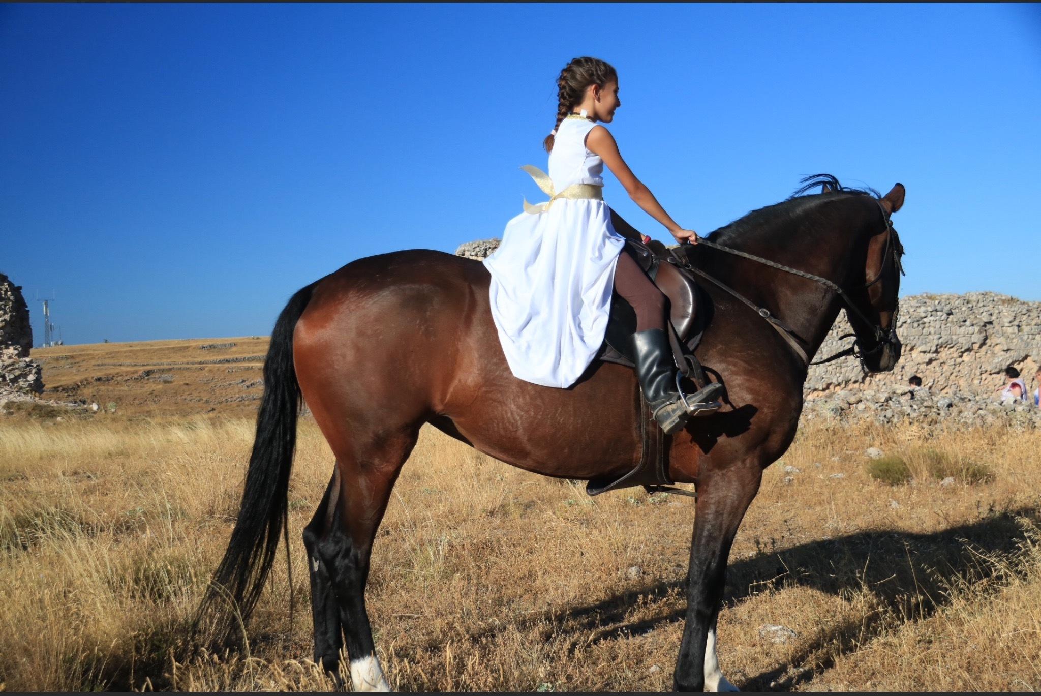 Beautiful horsewoman by Gregorio Emper
