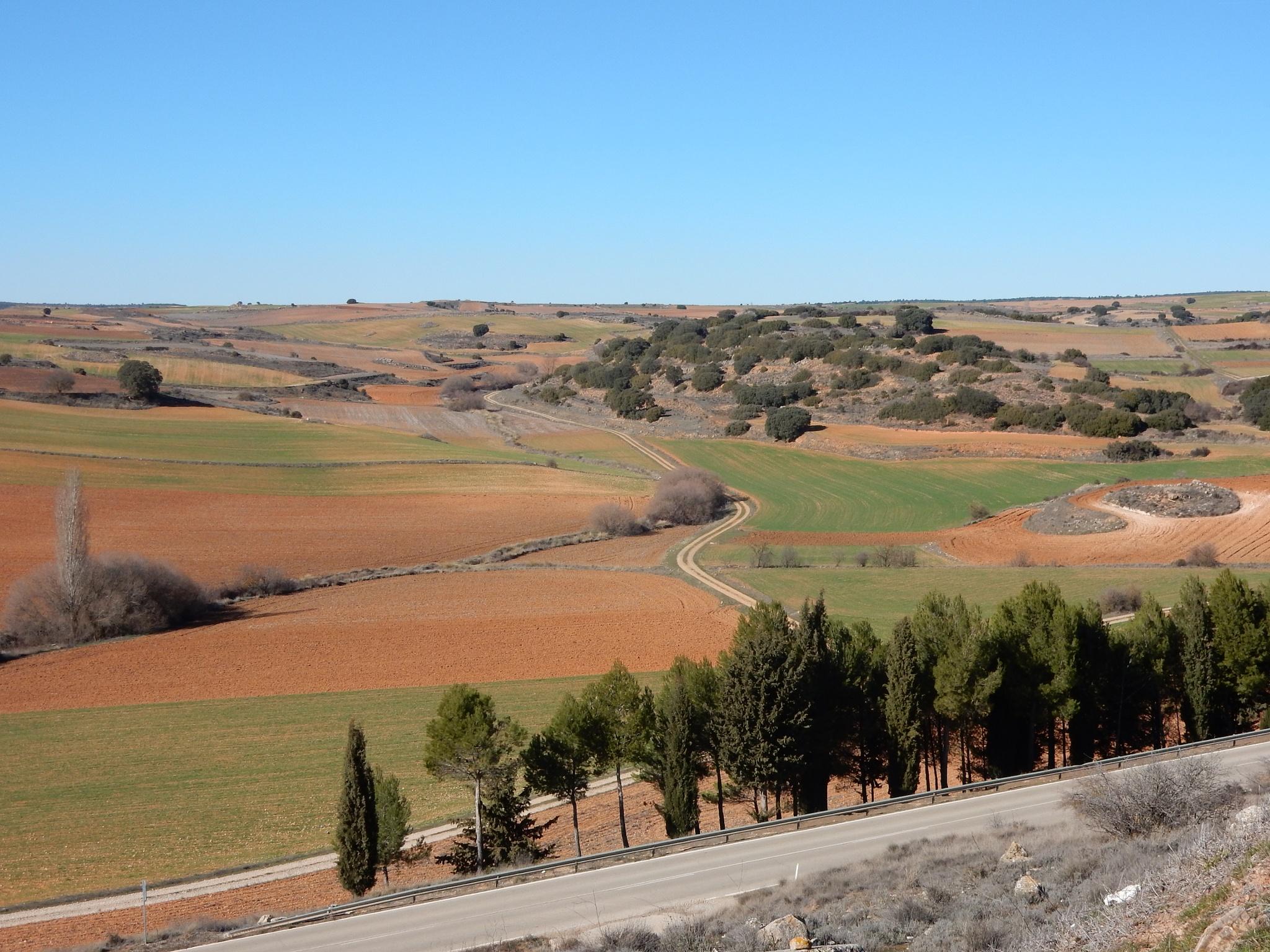 Campos de Castilla by Gregorio Emper