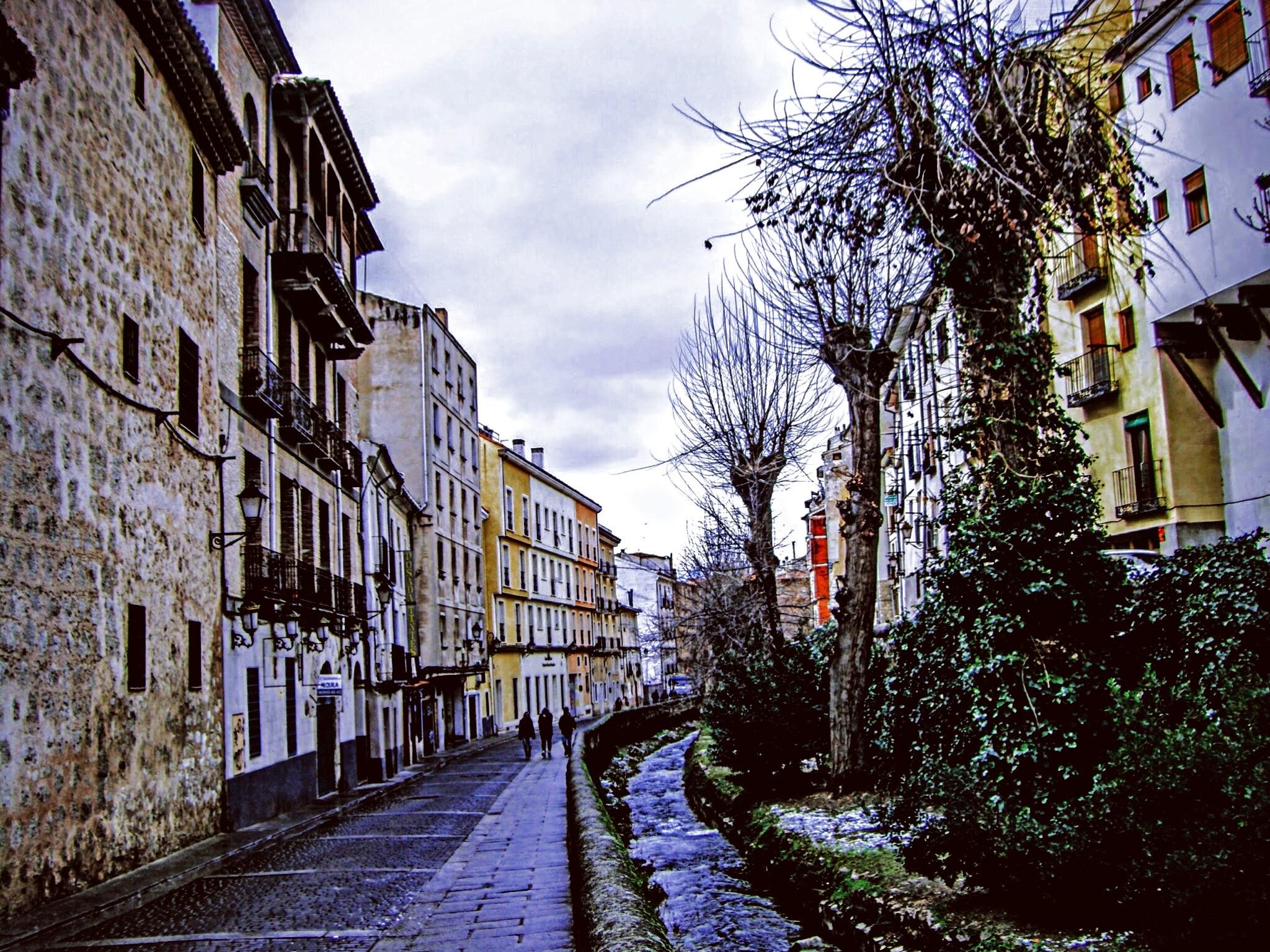 Los Tintes Street by Gregorio Emper