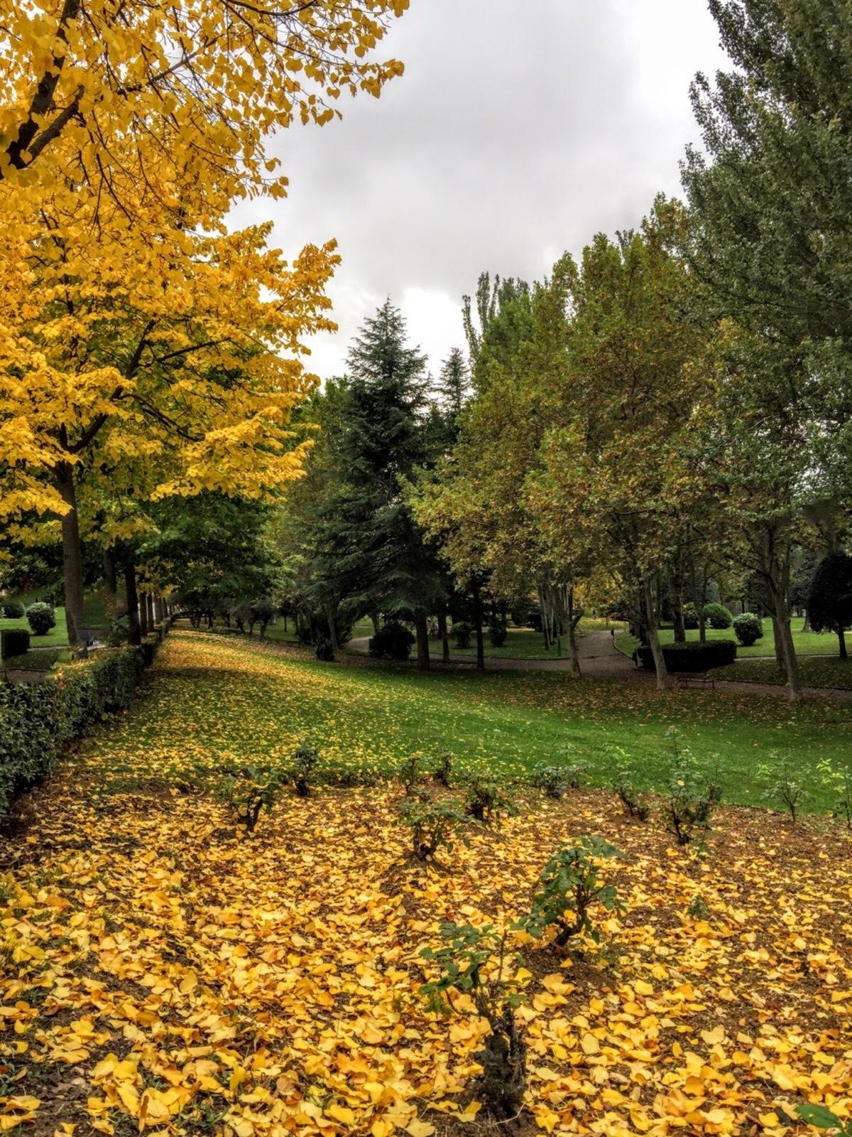 Autumn by Gregorio Emper