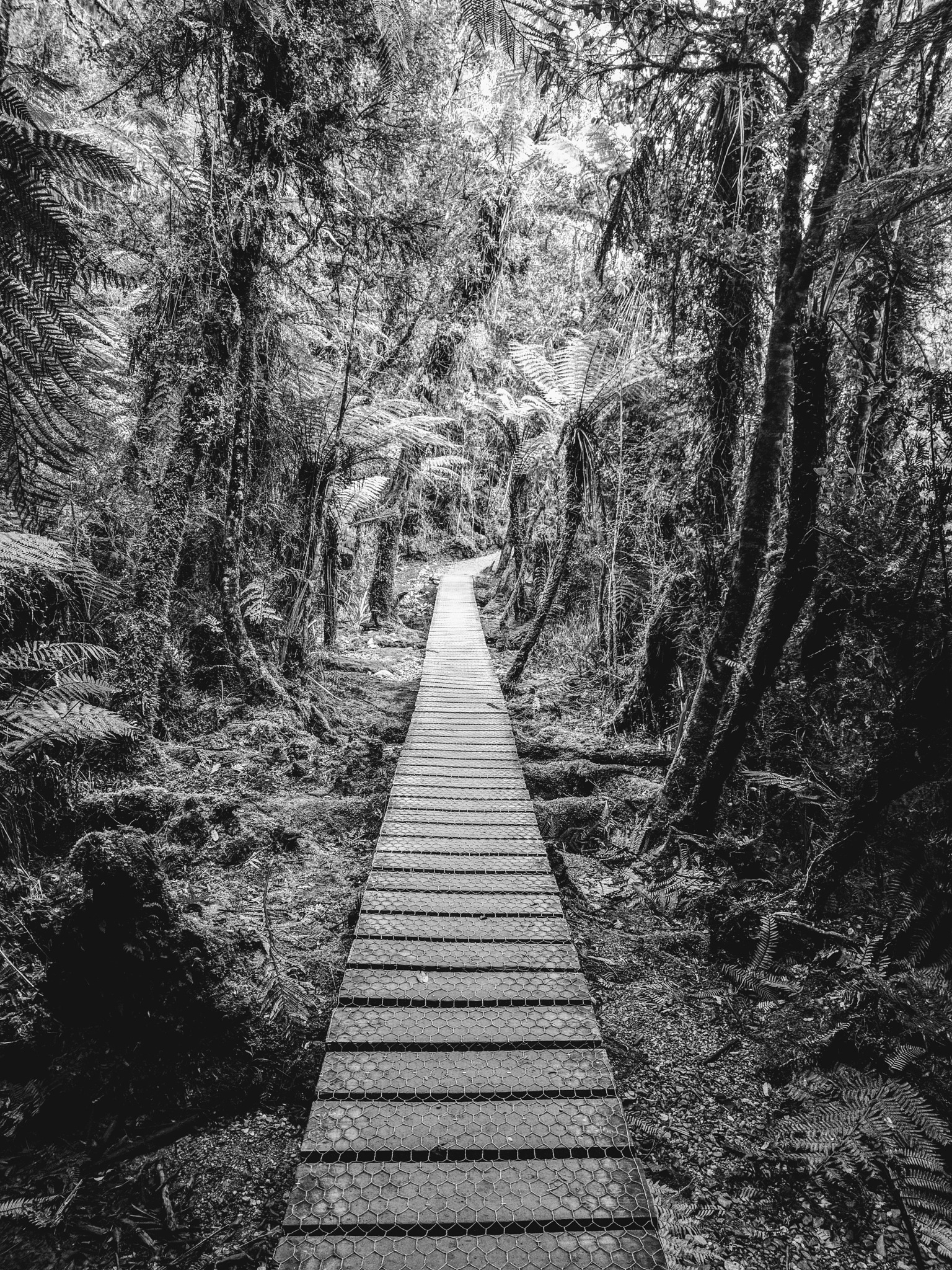 path to the lake by julz