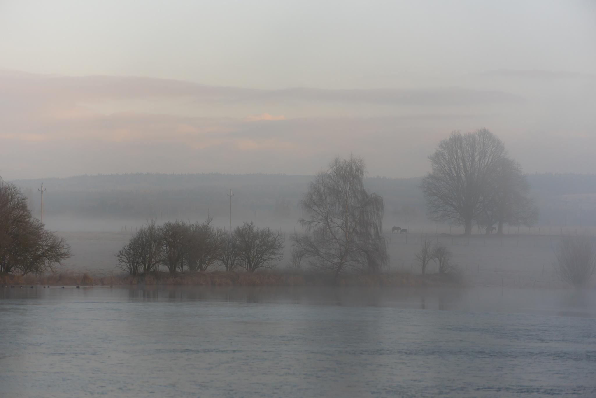 Winter morning at the pond by Miroslav Ondříšek