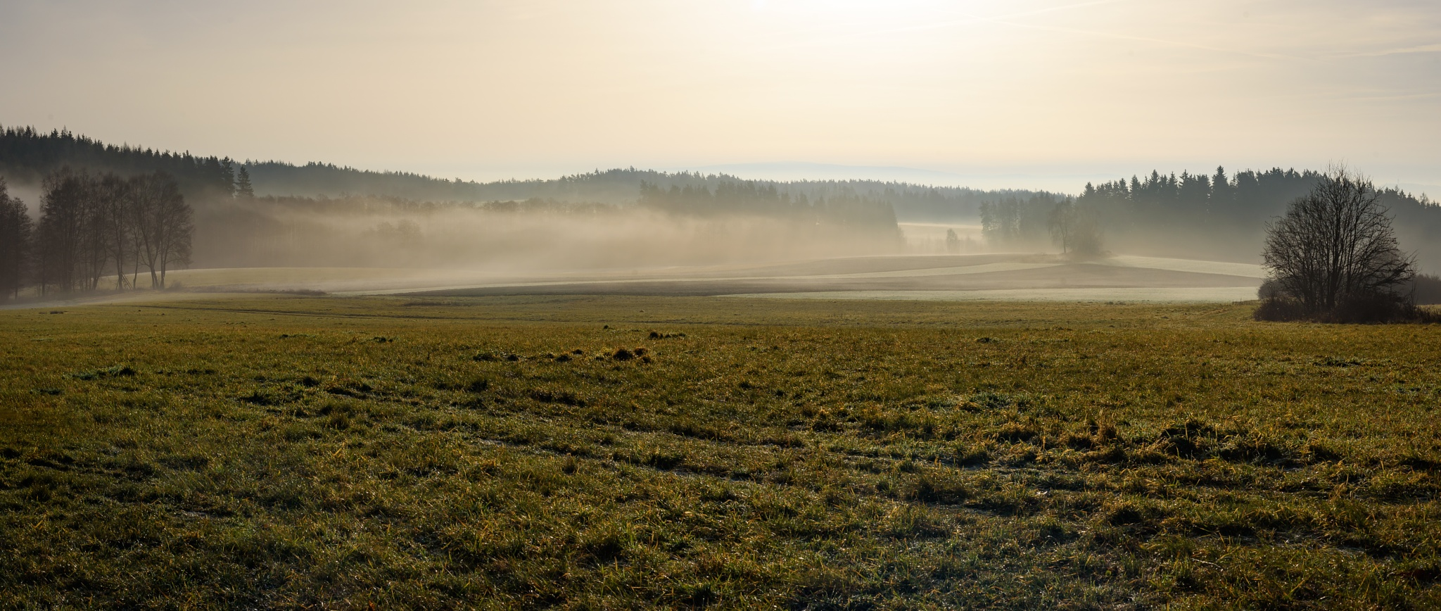 Foggy morning by Miroslav Ondříšek
