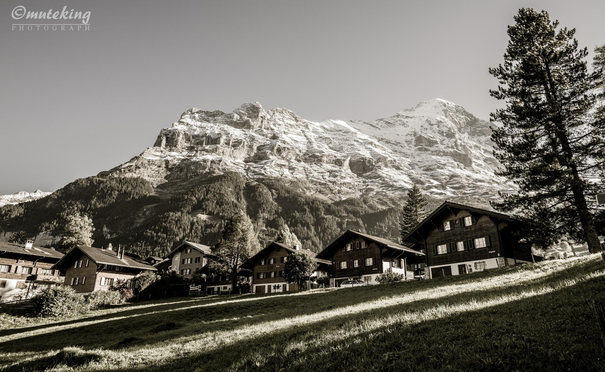 Winter before mountain landscape by muteking