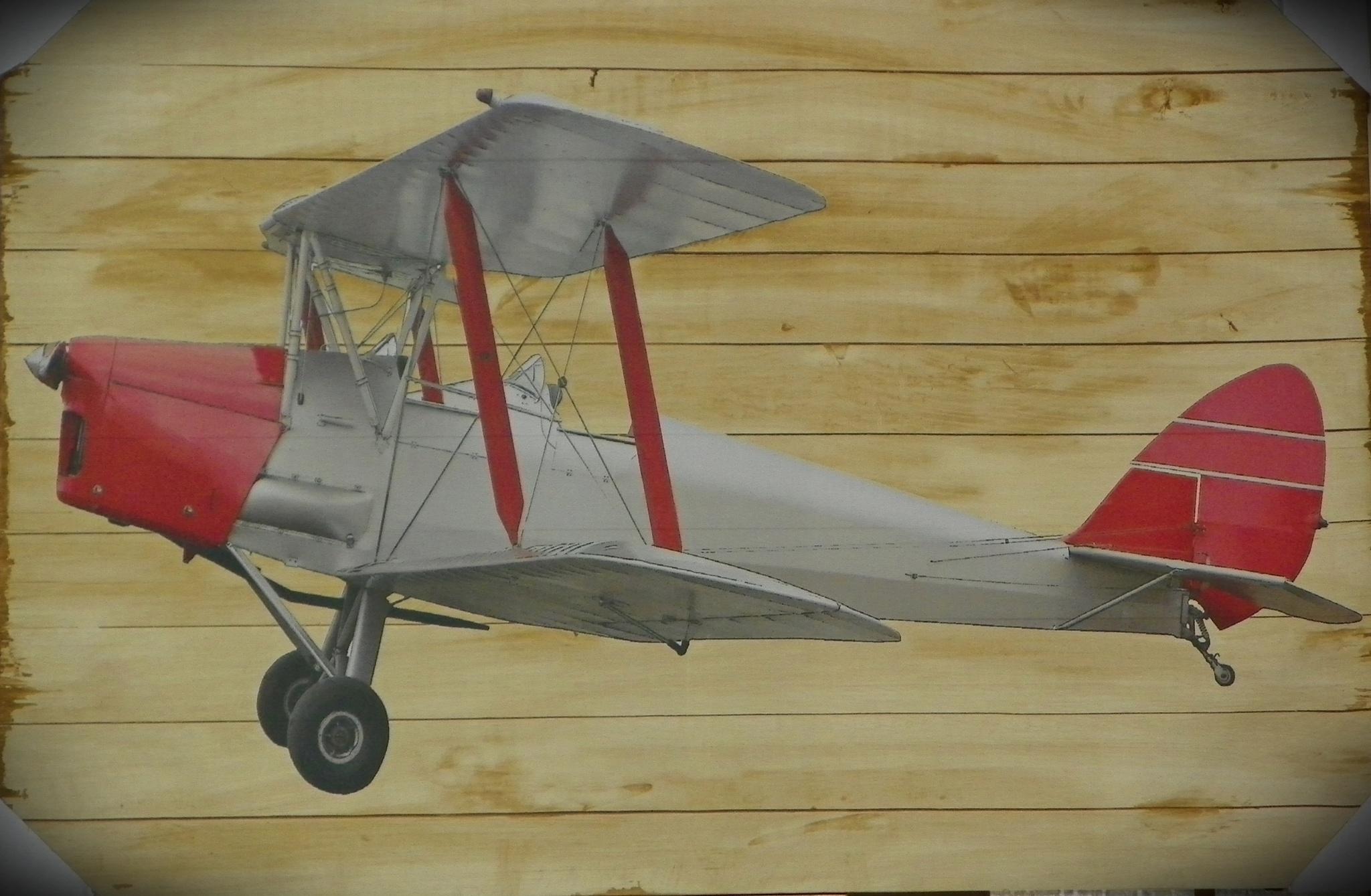 Airplane Plaque by ssmjdd