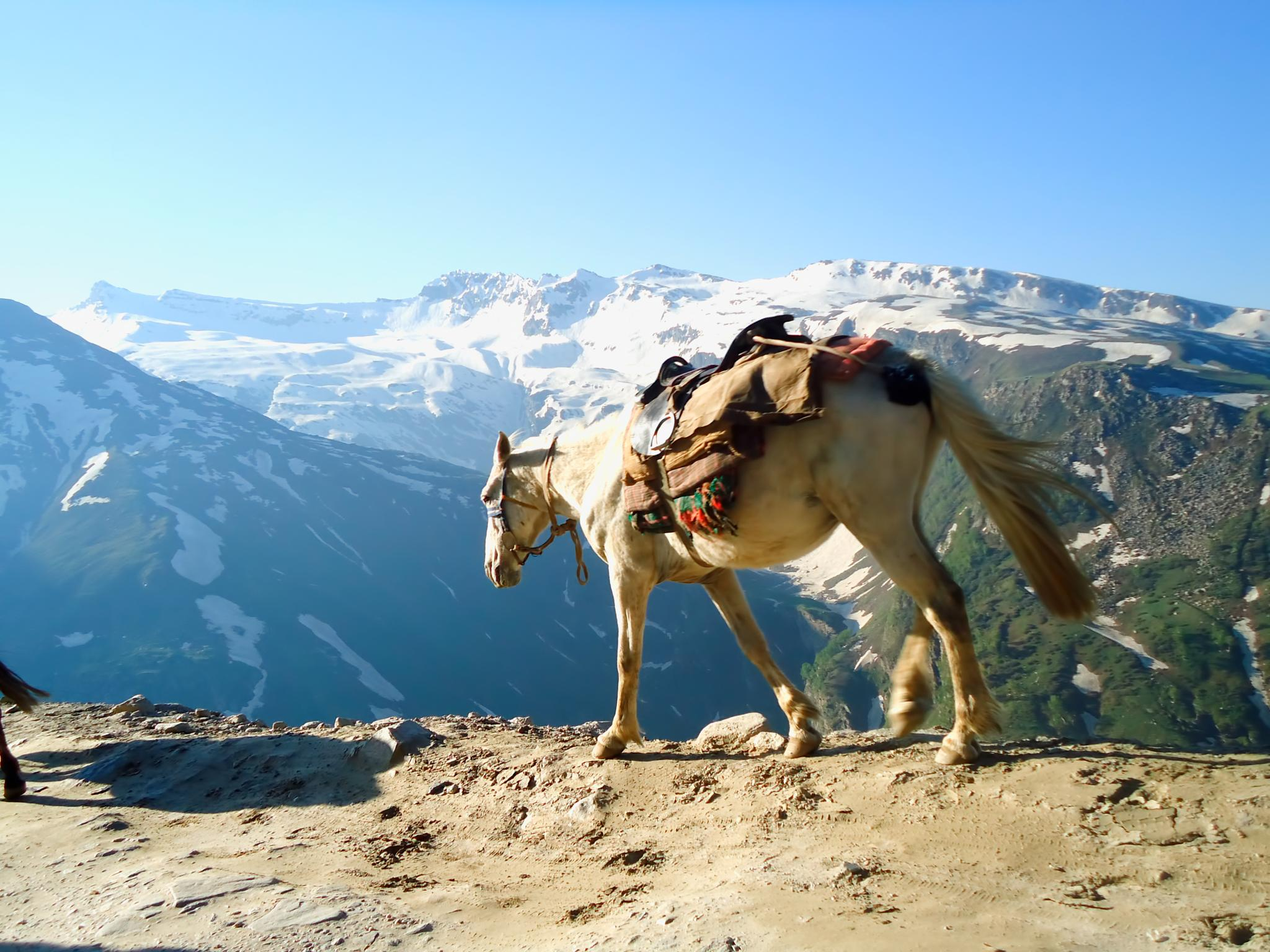 Mountain Traveller by Rs Photography