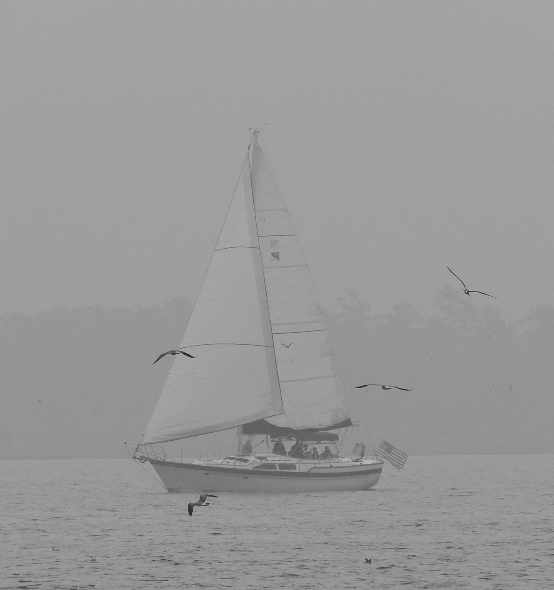 Sailboat in fog by sh2020