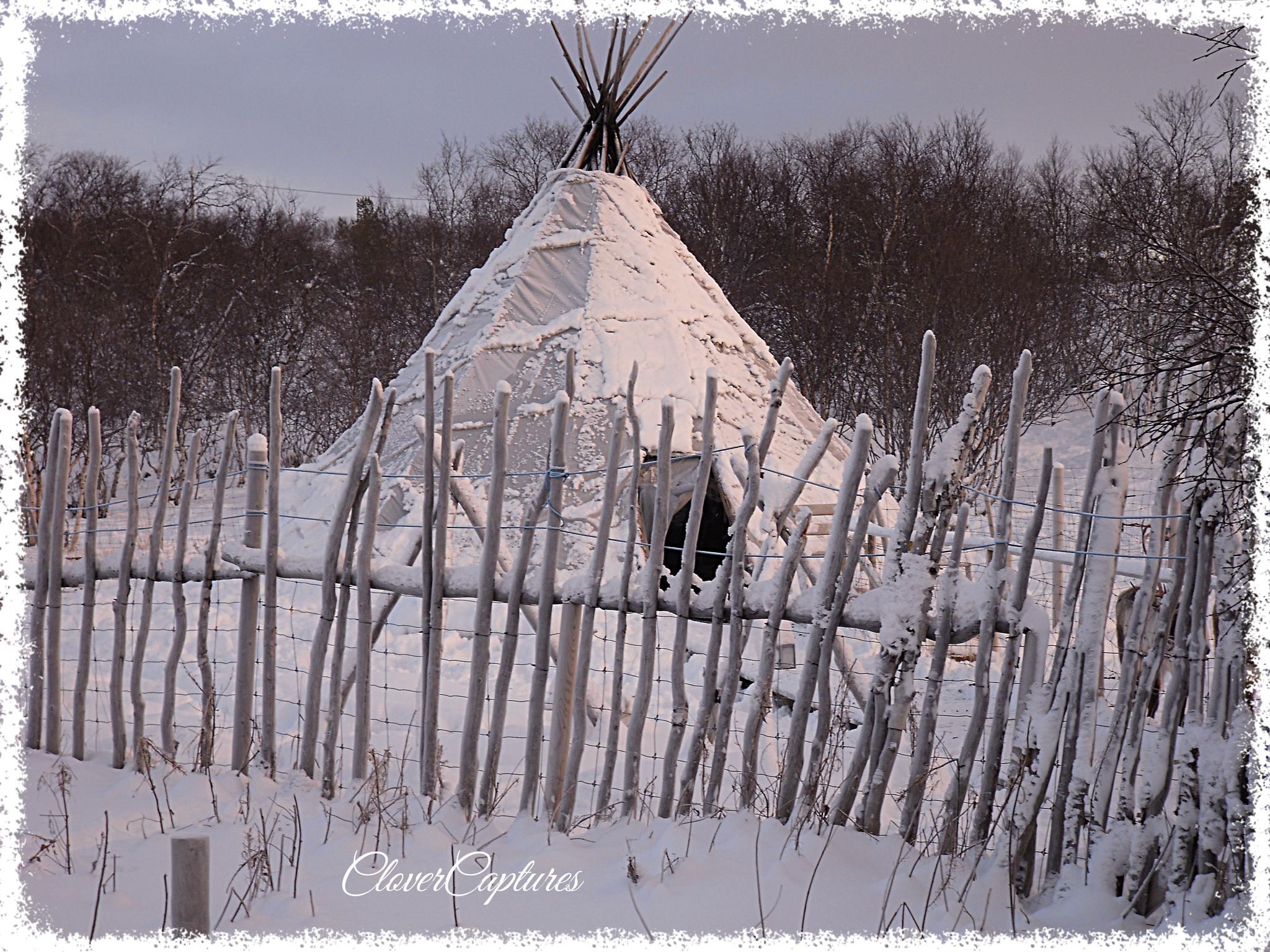 Sami Yurt by Yvonne Clover-Lambert
