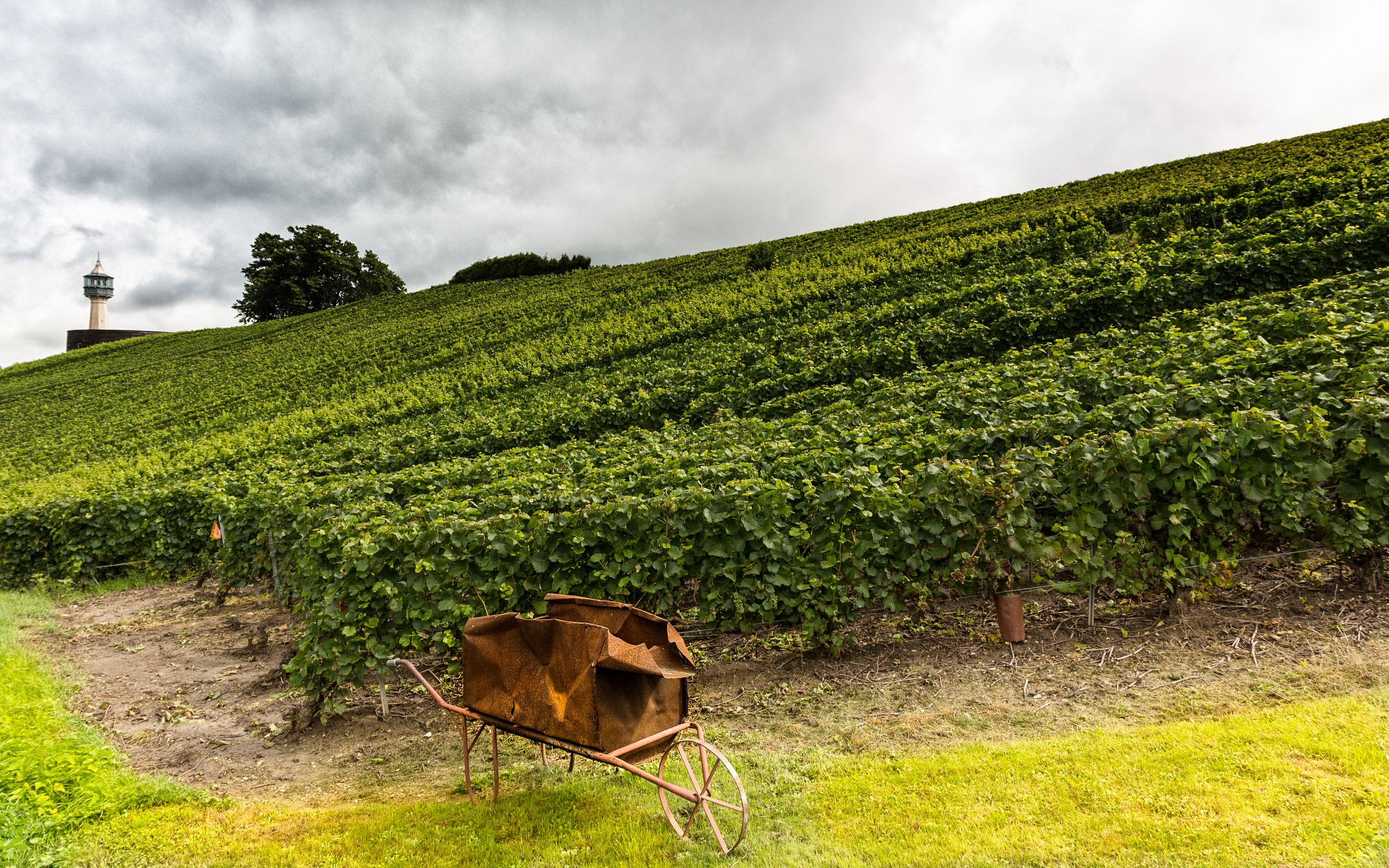 Champagne by Antonello Madau Antofender
