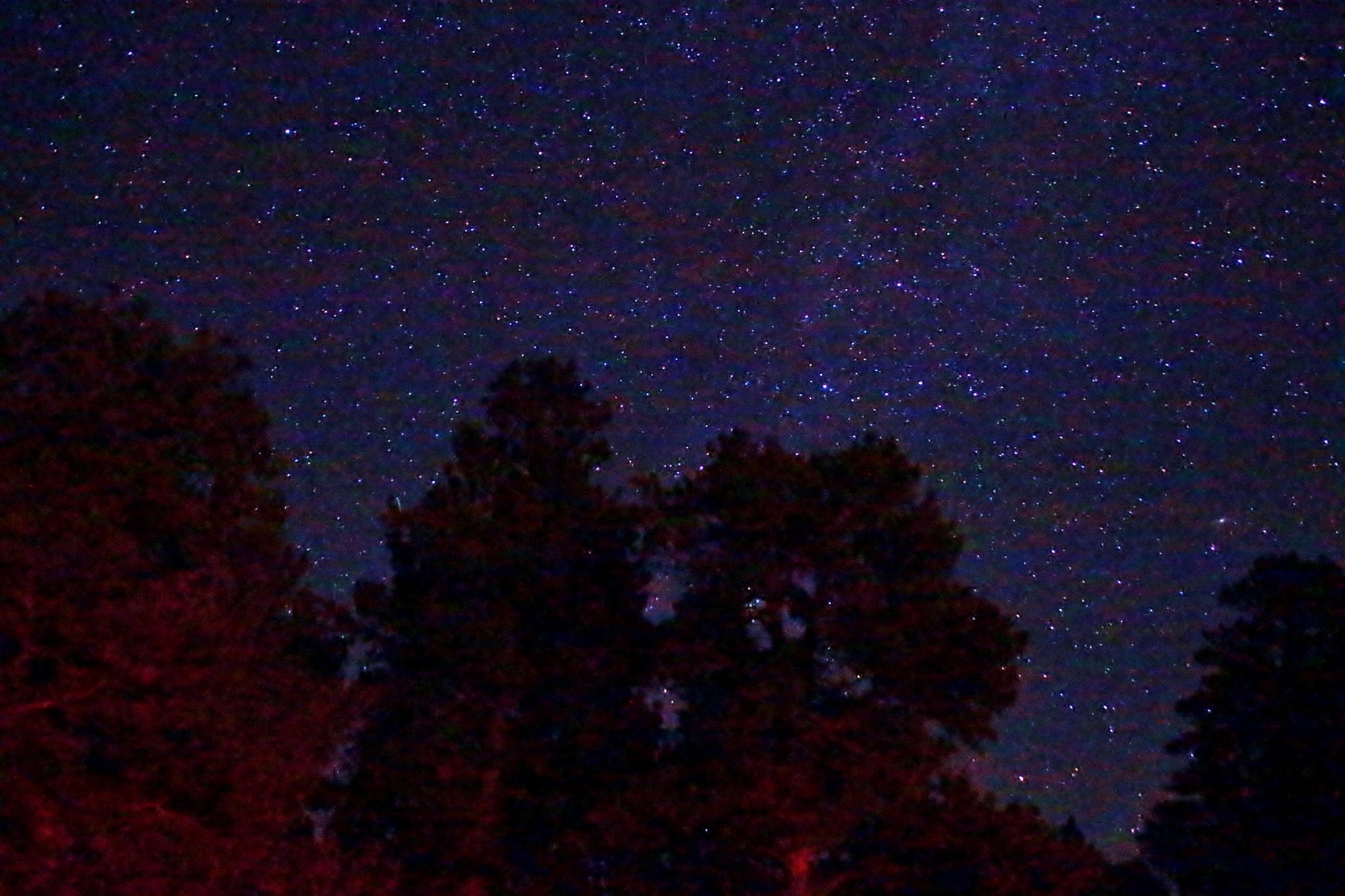 Star Light Star Bright by yehaa_2001
