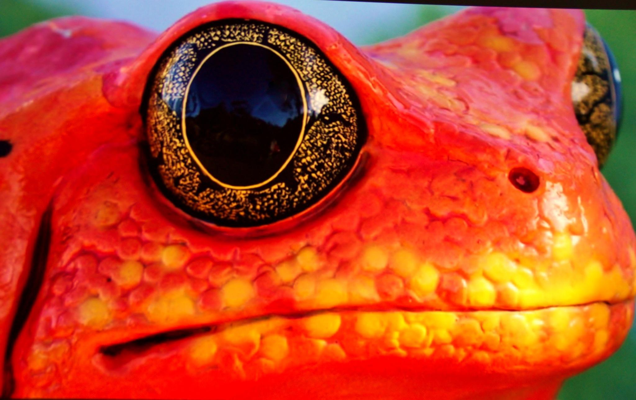 Golden Eye by yehaa_2001