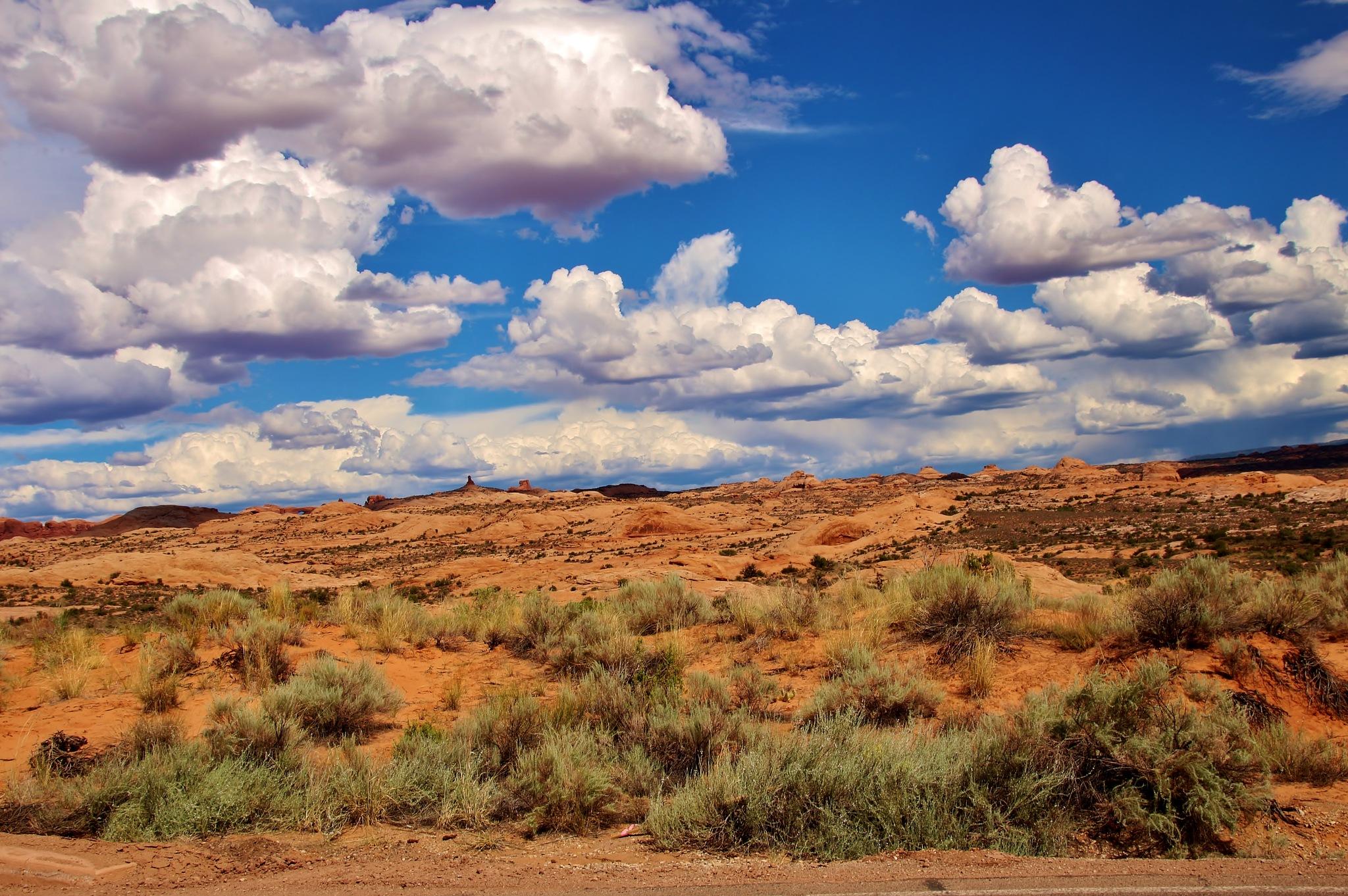 Petrified Dunes by yehaa_2001