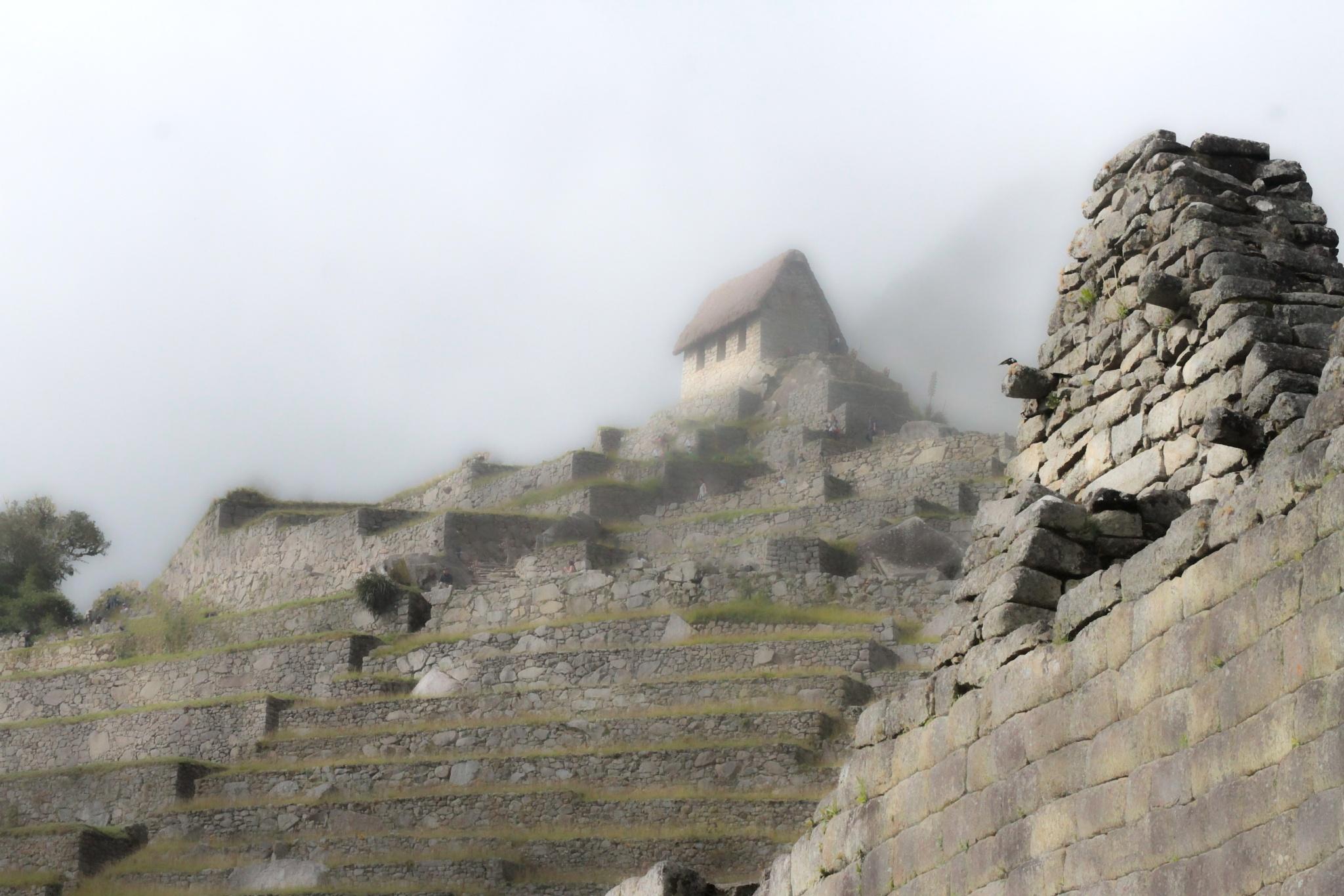 Machu Picchu by fotoroberto