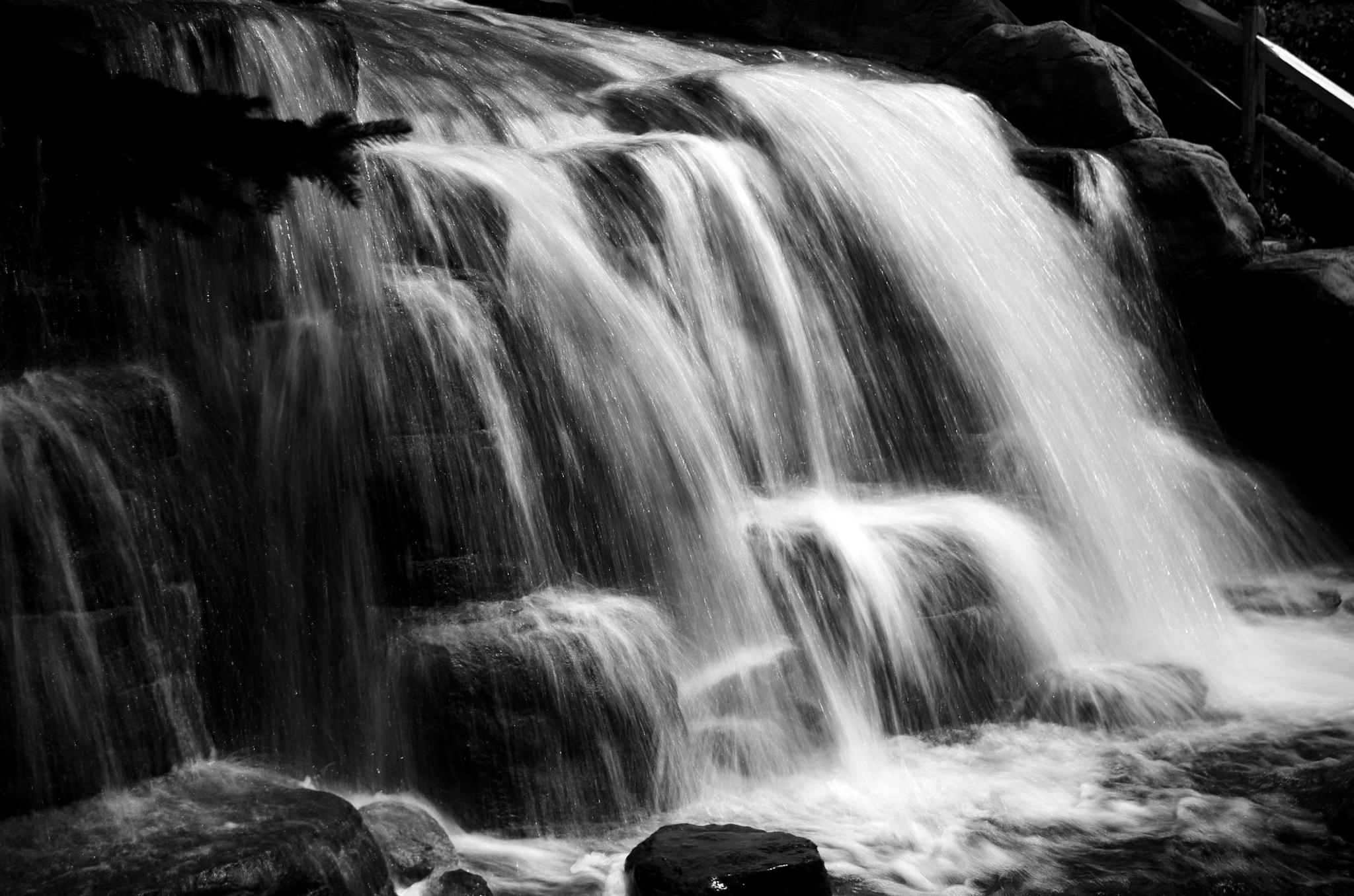 Photo in Black and White #waterfall