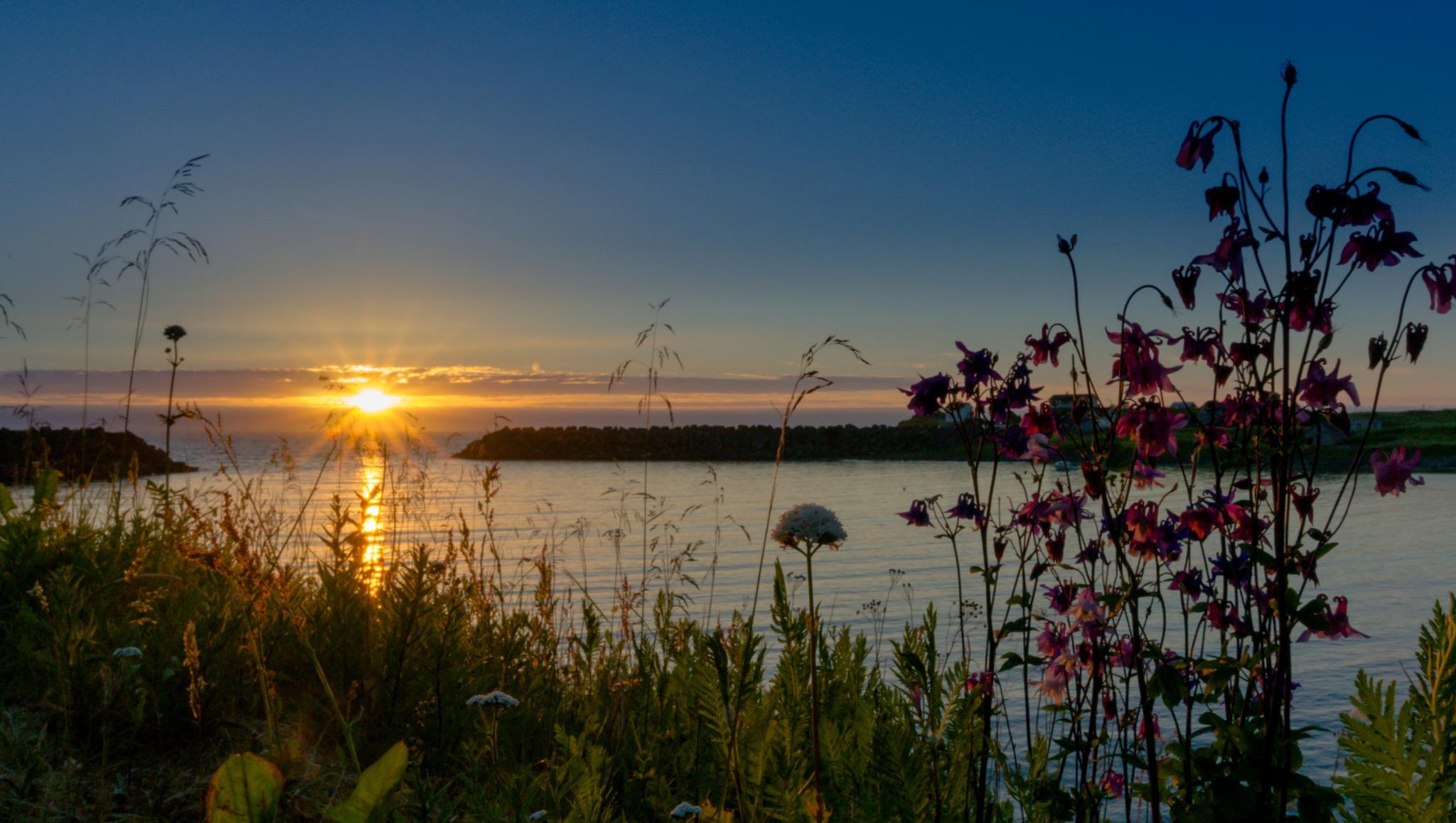Solnedgang i Nykvåg by harald.larsen