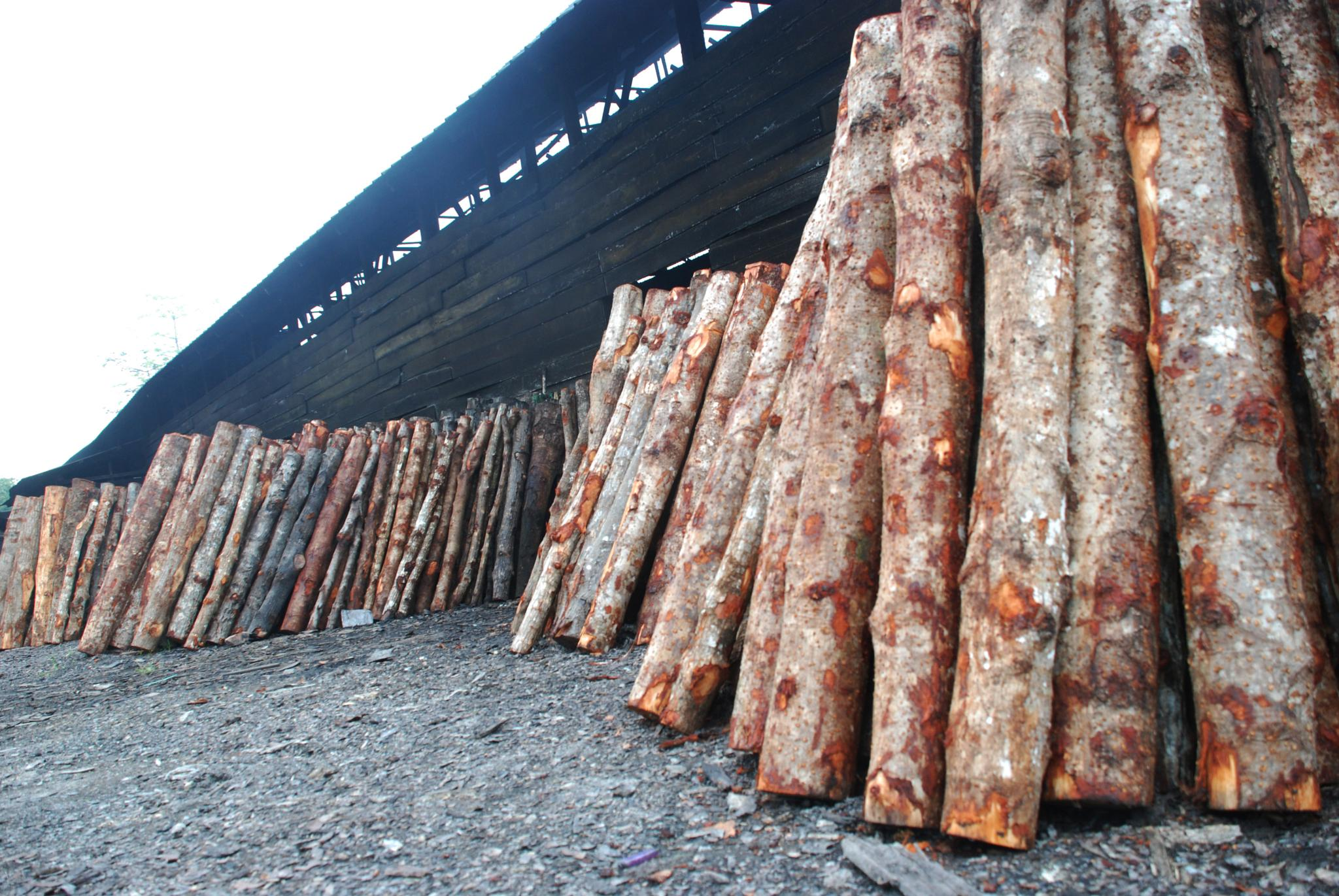 kuala sepetang taiping charcoal factory by wooyuenfoo
