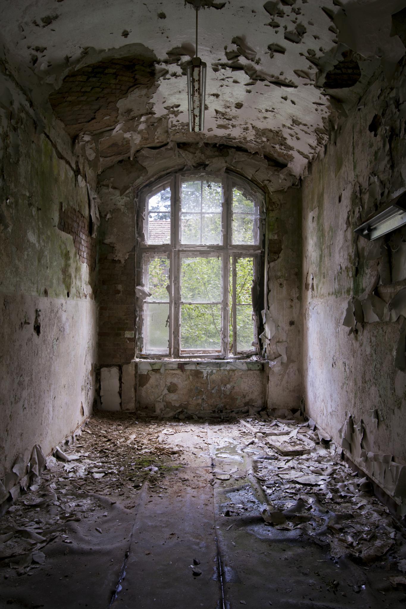 decay by Julian Klein