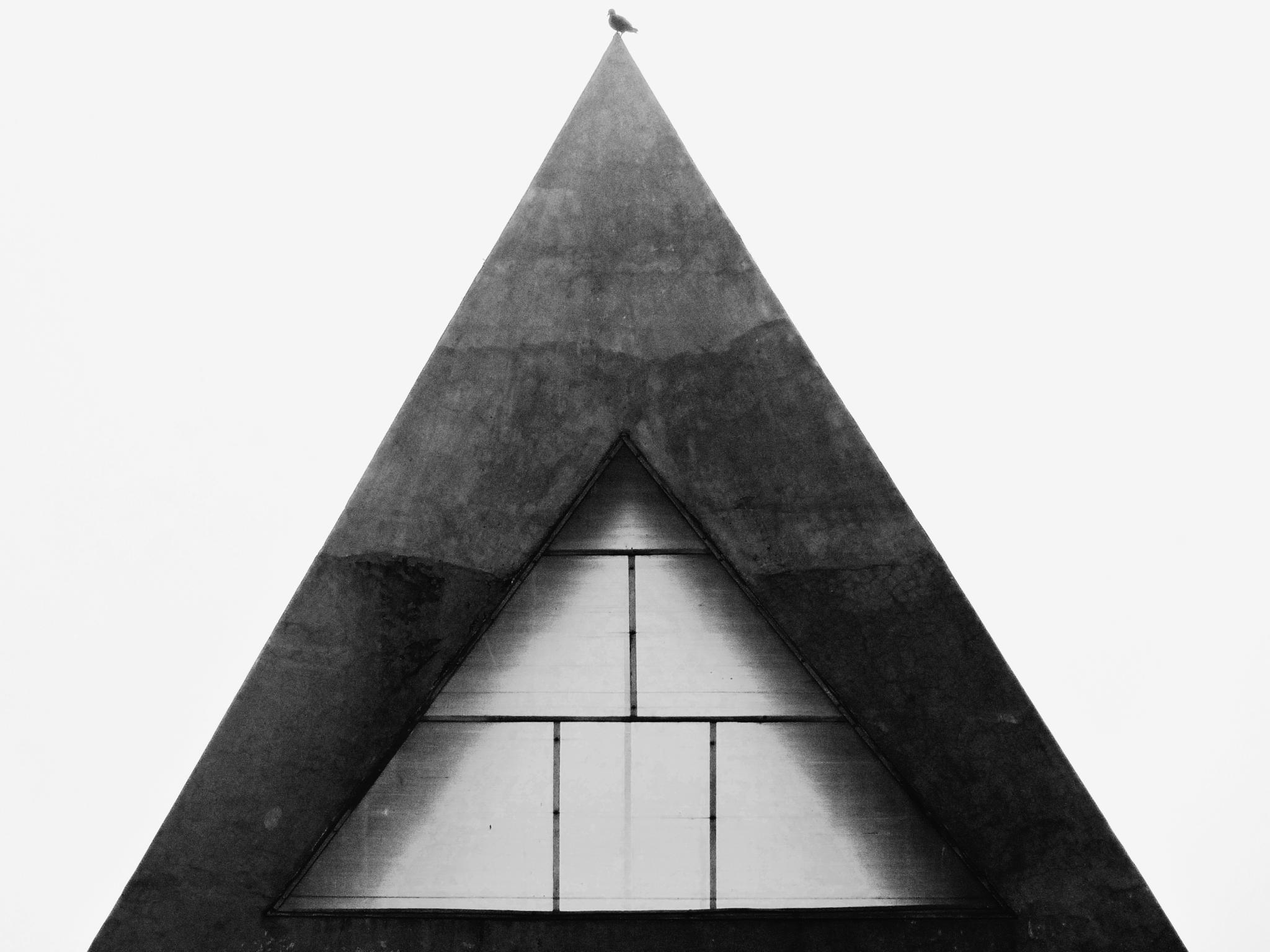 Geometry by Shreyans S Shah