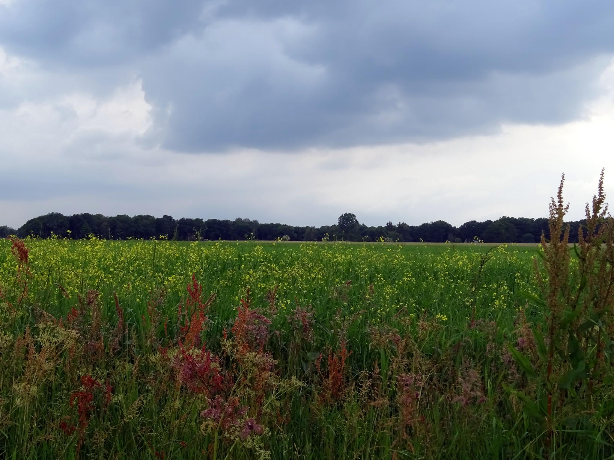 Dark clouds above a beautiful landscape by missjoy86
