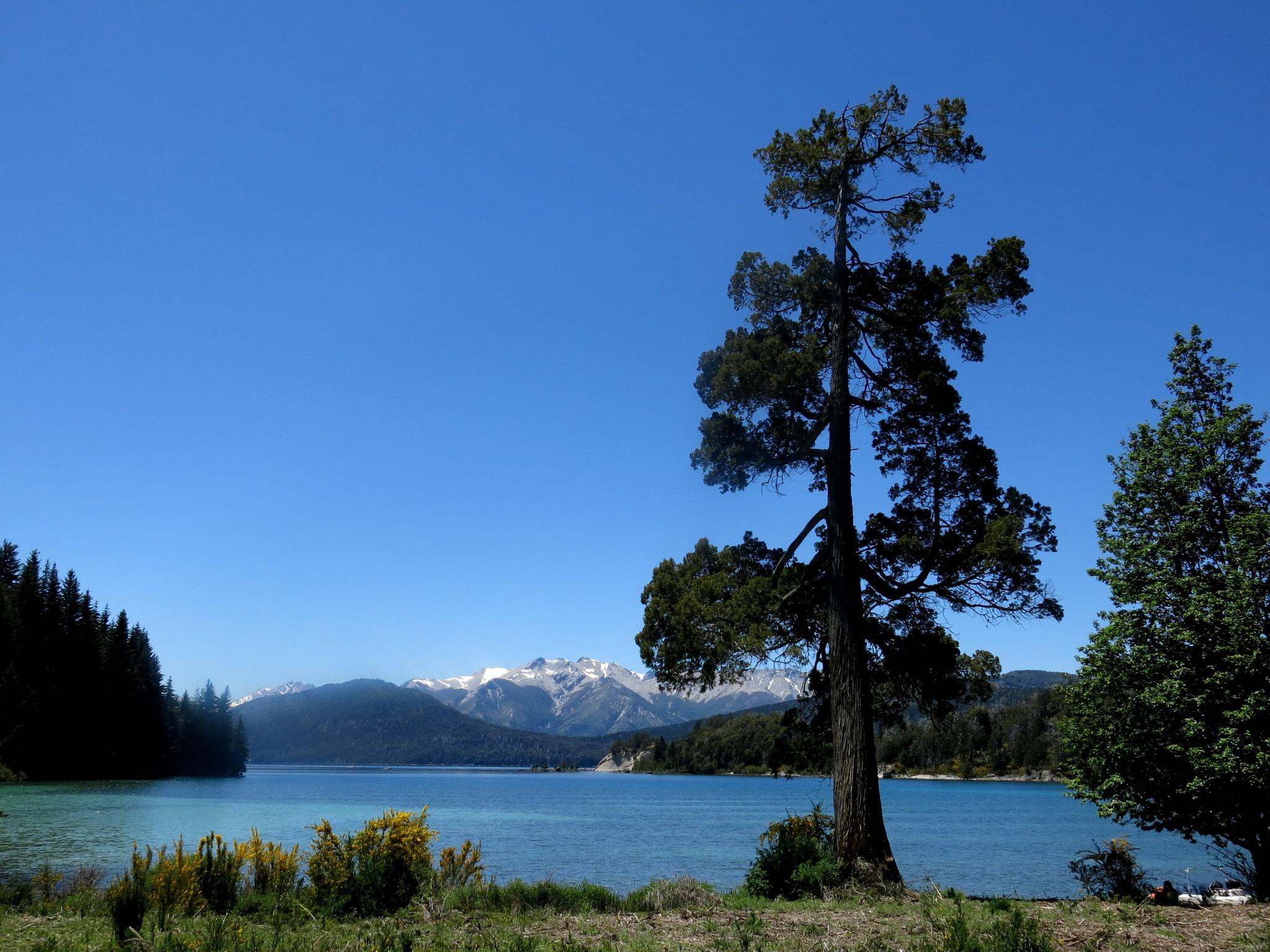 Patagonia. by TatyanaNagel