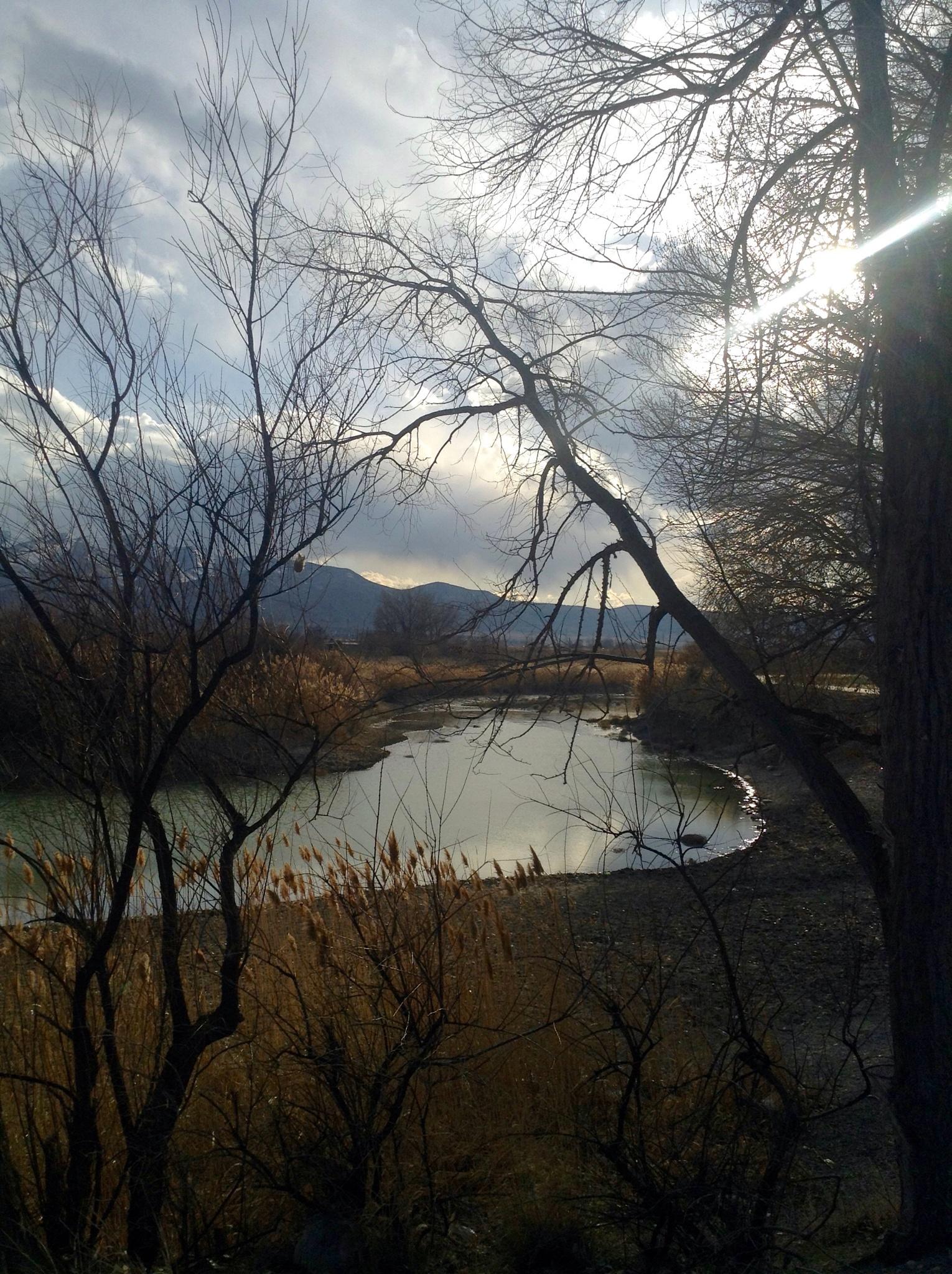 Photo in Landscape #river #trail #trees #clouds #scene