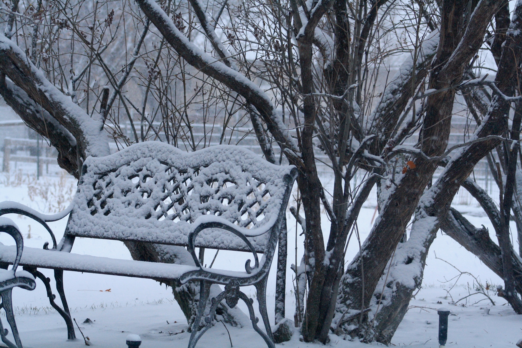 Snow Bench by slaac