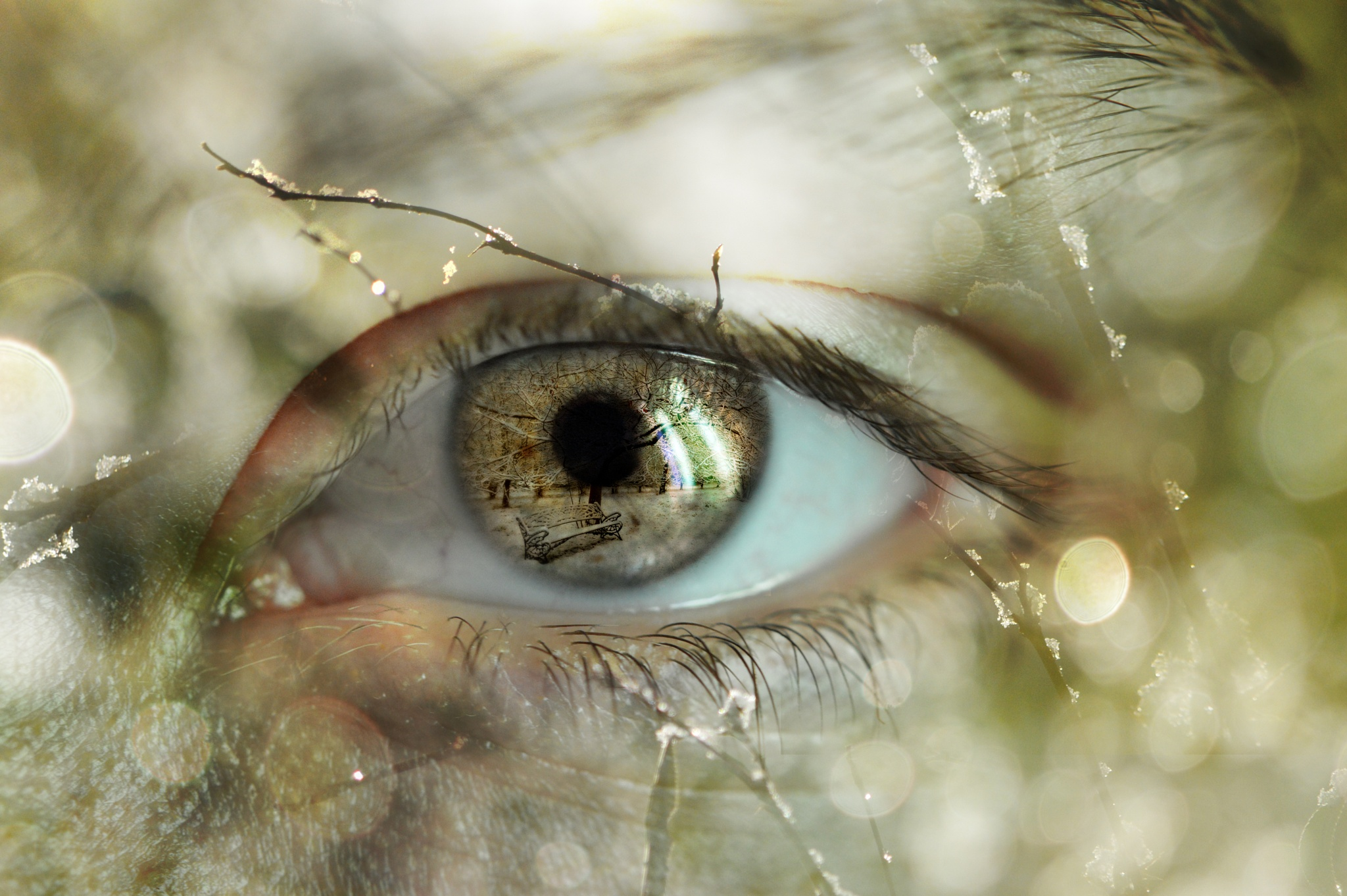 winter in my eyes by Ludmila Shumilova
