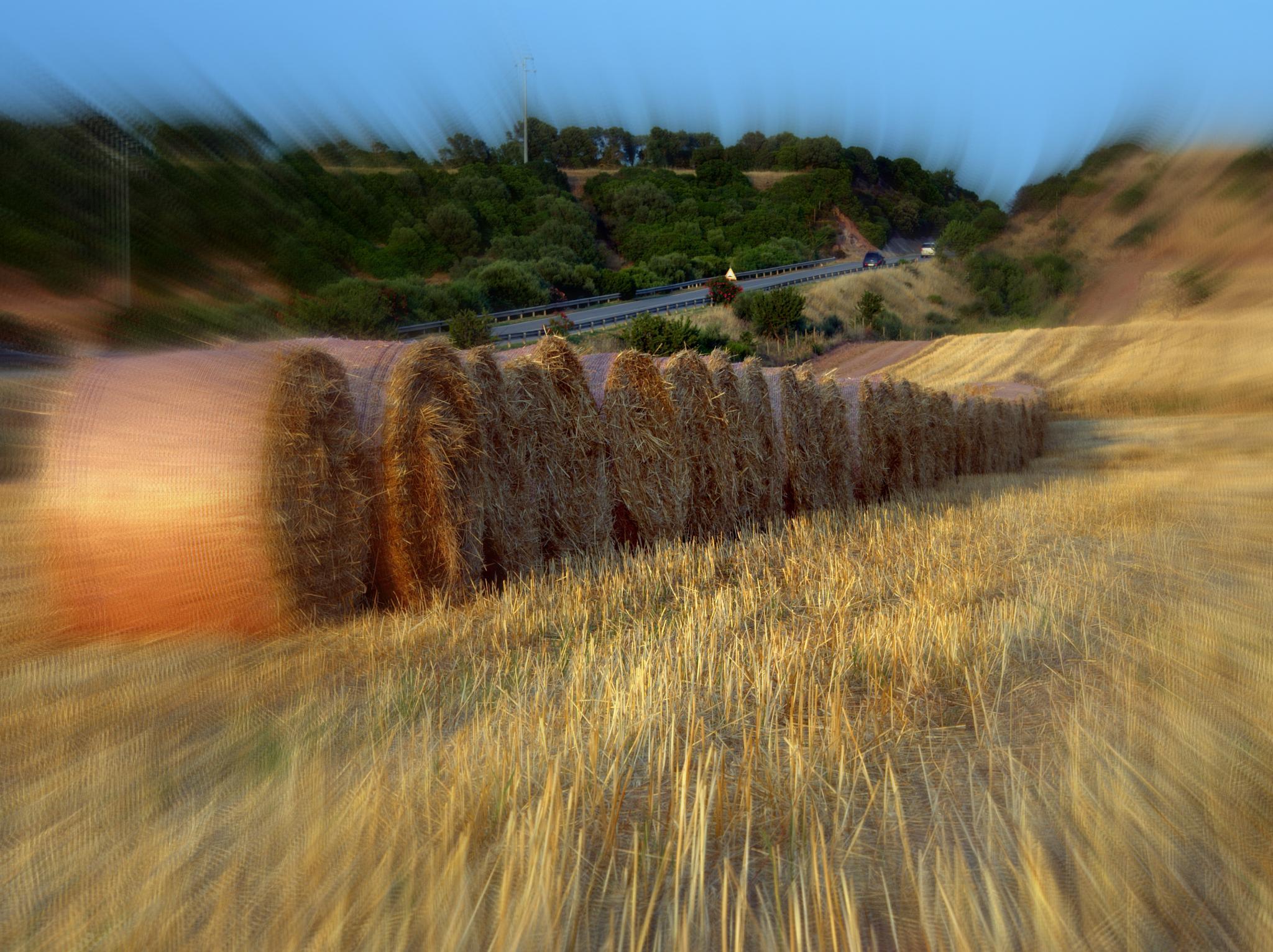 Paesaggio by Michele Pinna Marras
