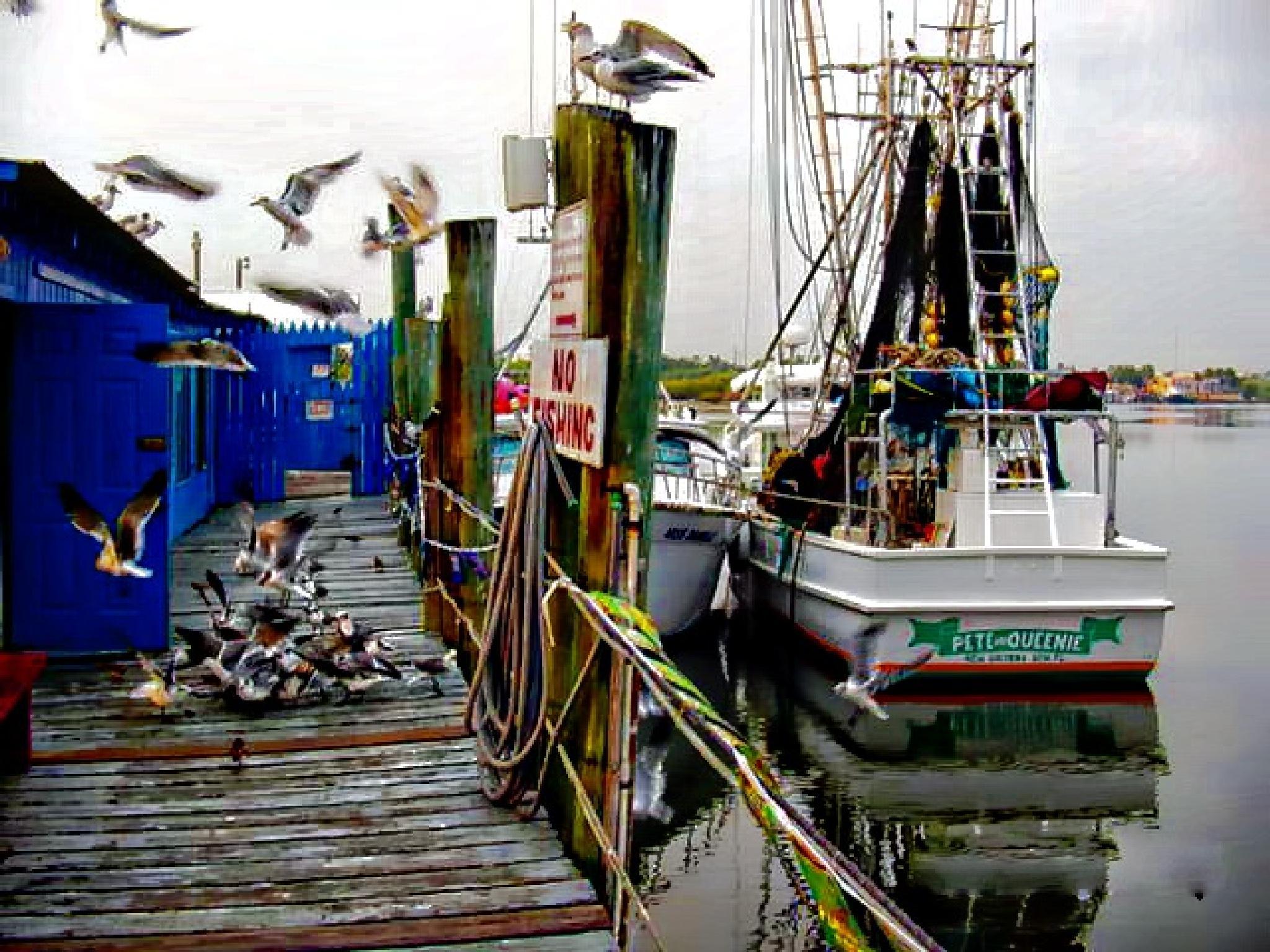 Fishing Boats by Jon Radtke
