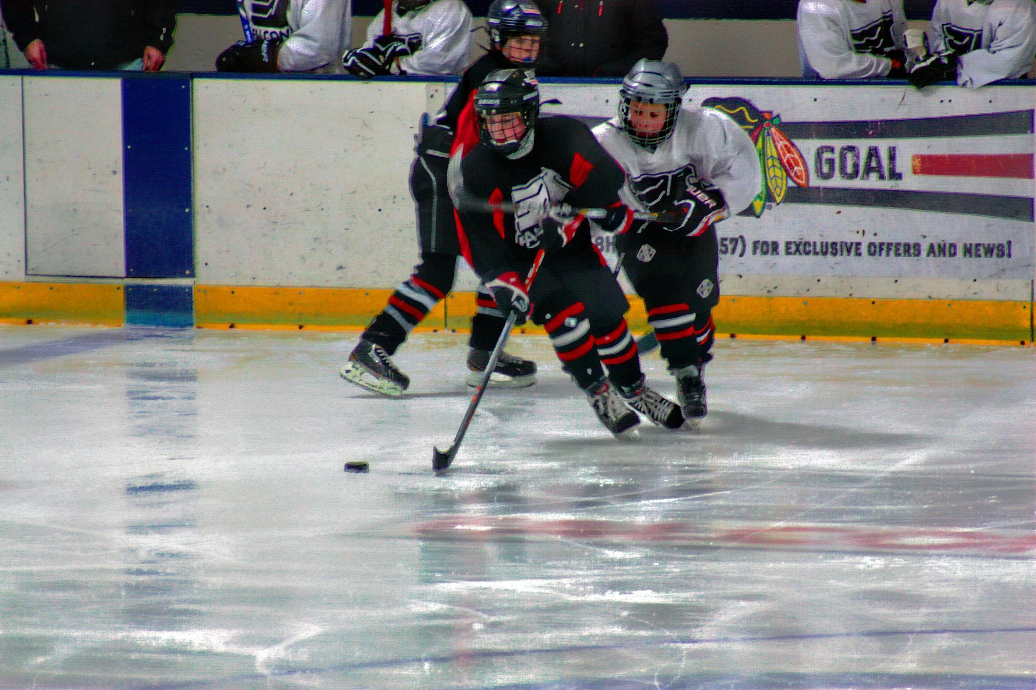 Photo in Sports #hockey #youth #team #games #hockey game #teams #jradtke #e #game