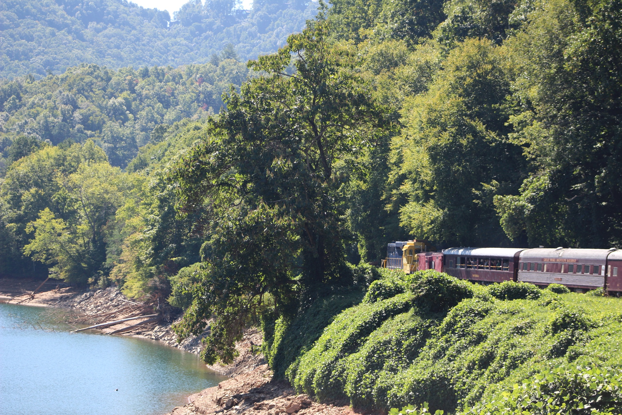 Train thru the gorge by MORCINDERS