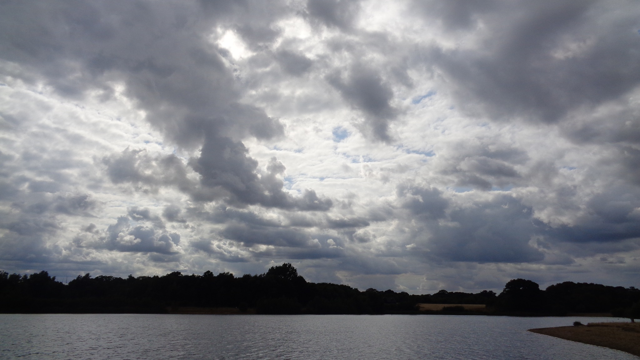 Testwood lakes  by traceybiddlecombe3666